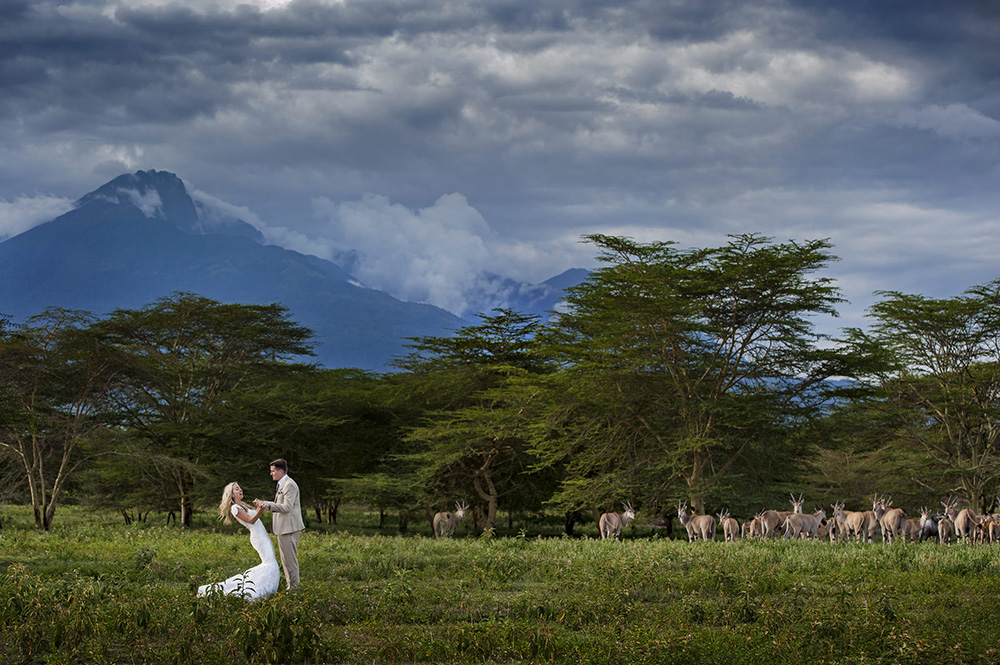 South Africa - bride and groom with herd of antelope - photo by Jacki Bruniquel