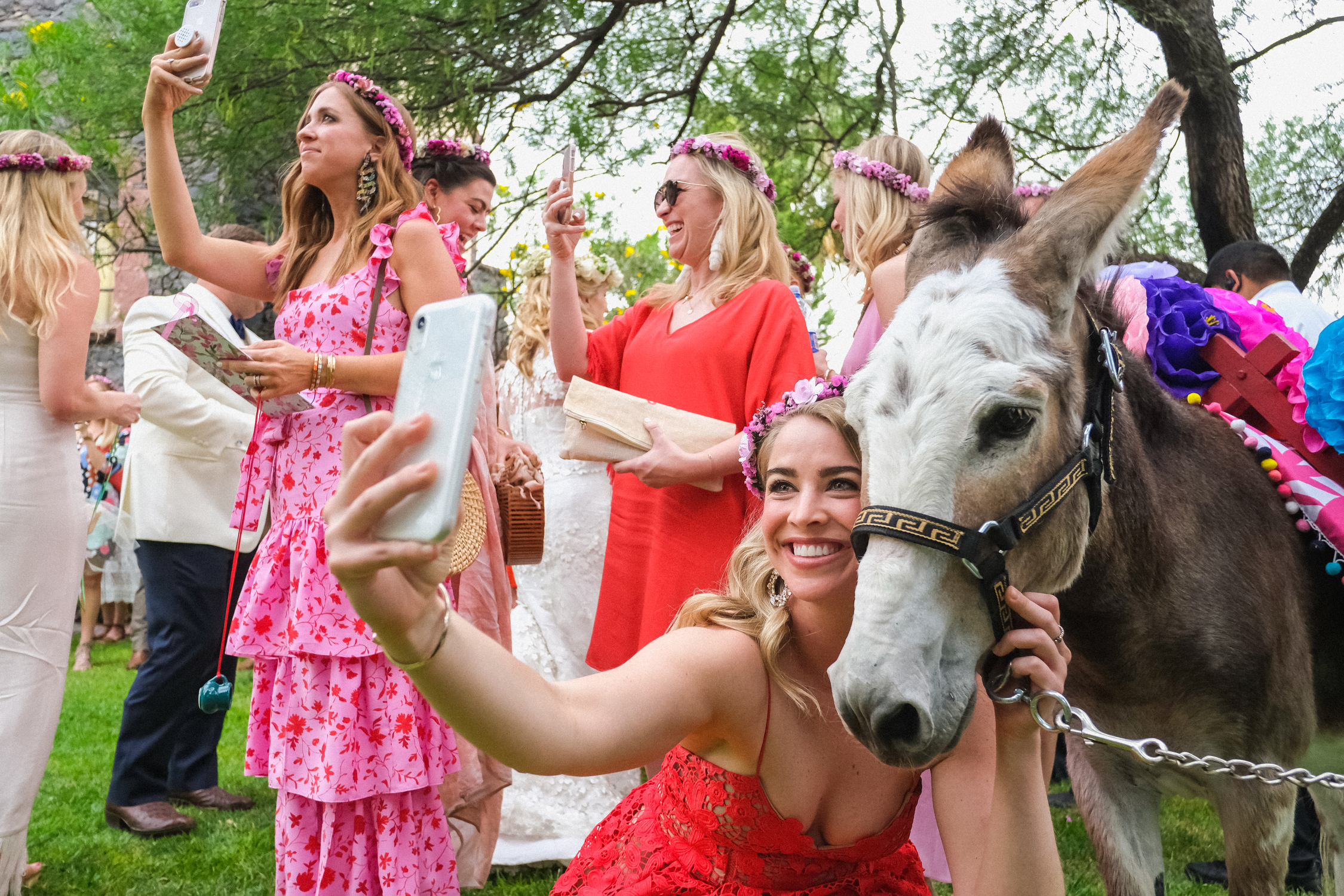 Guests making selfies with donkeys at wedding by Annie Bang of Los Angeles