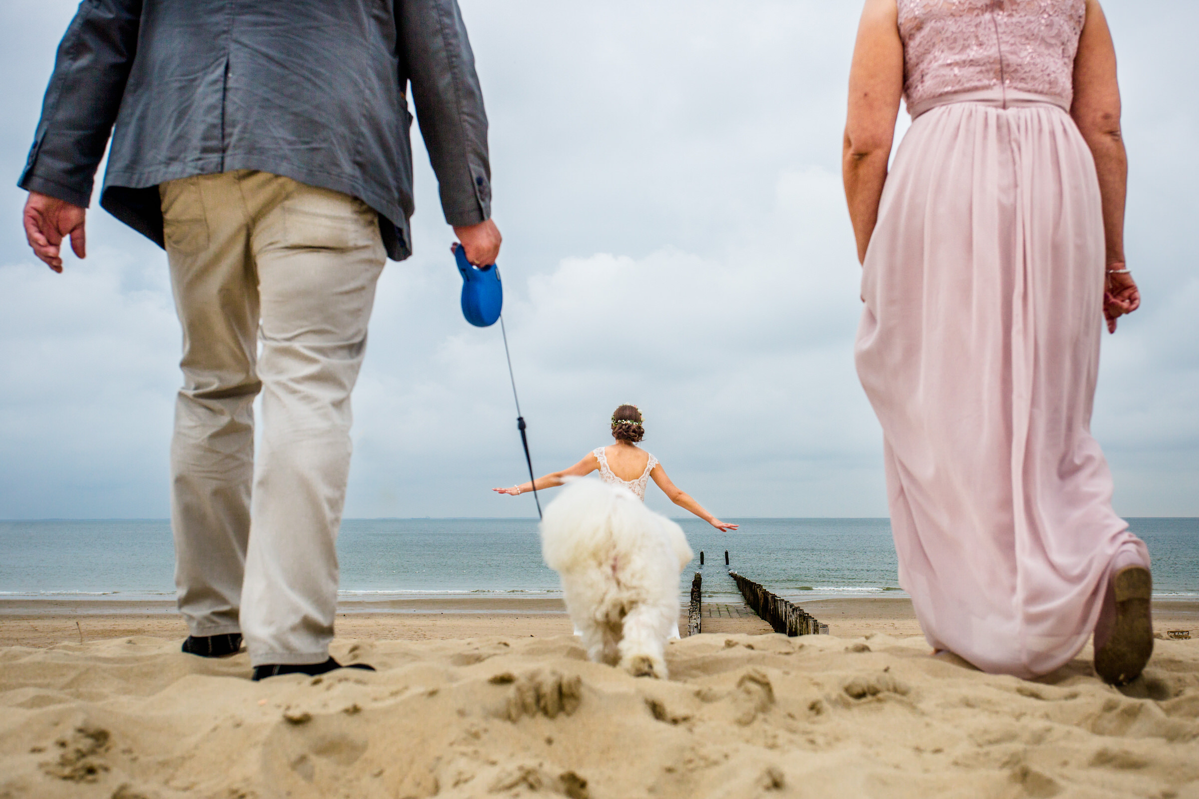 dog-show-steven-herschafft-worlds-best-wedding-photos-dog-as-dress