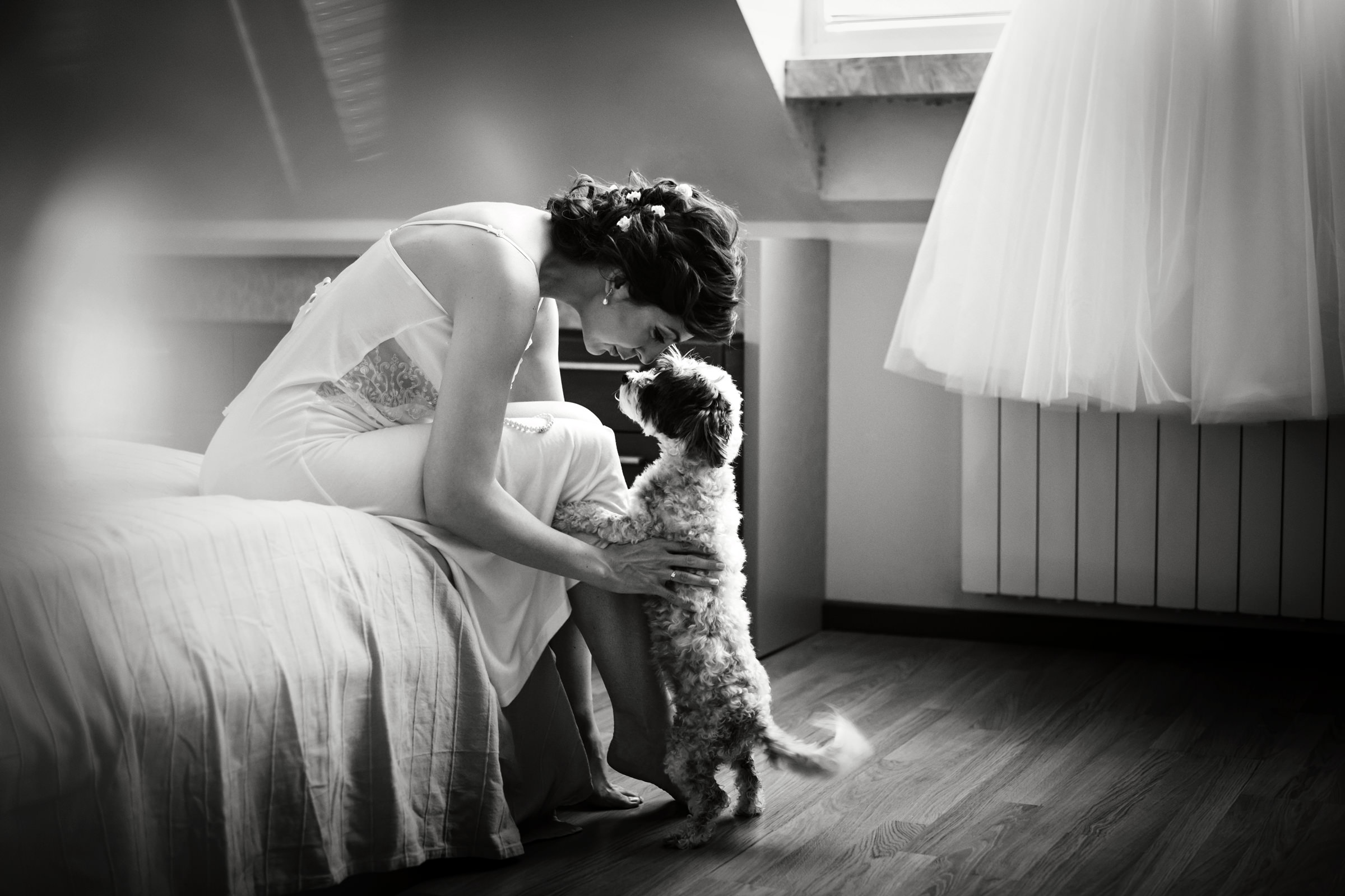 dog-show-katie-kaizer-worlds-best-wedding-photos-bride-and-dog-sweet-moment