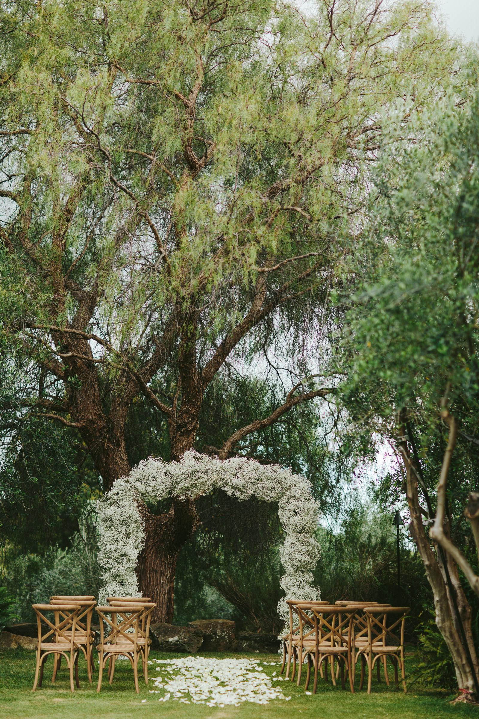 calasa-olive-farm-maui-floral-arbor-against-trees-melia-lucida