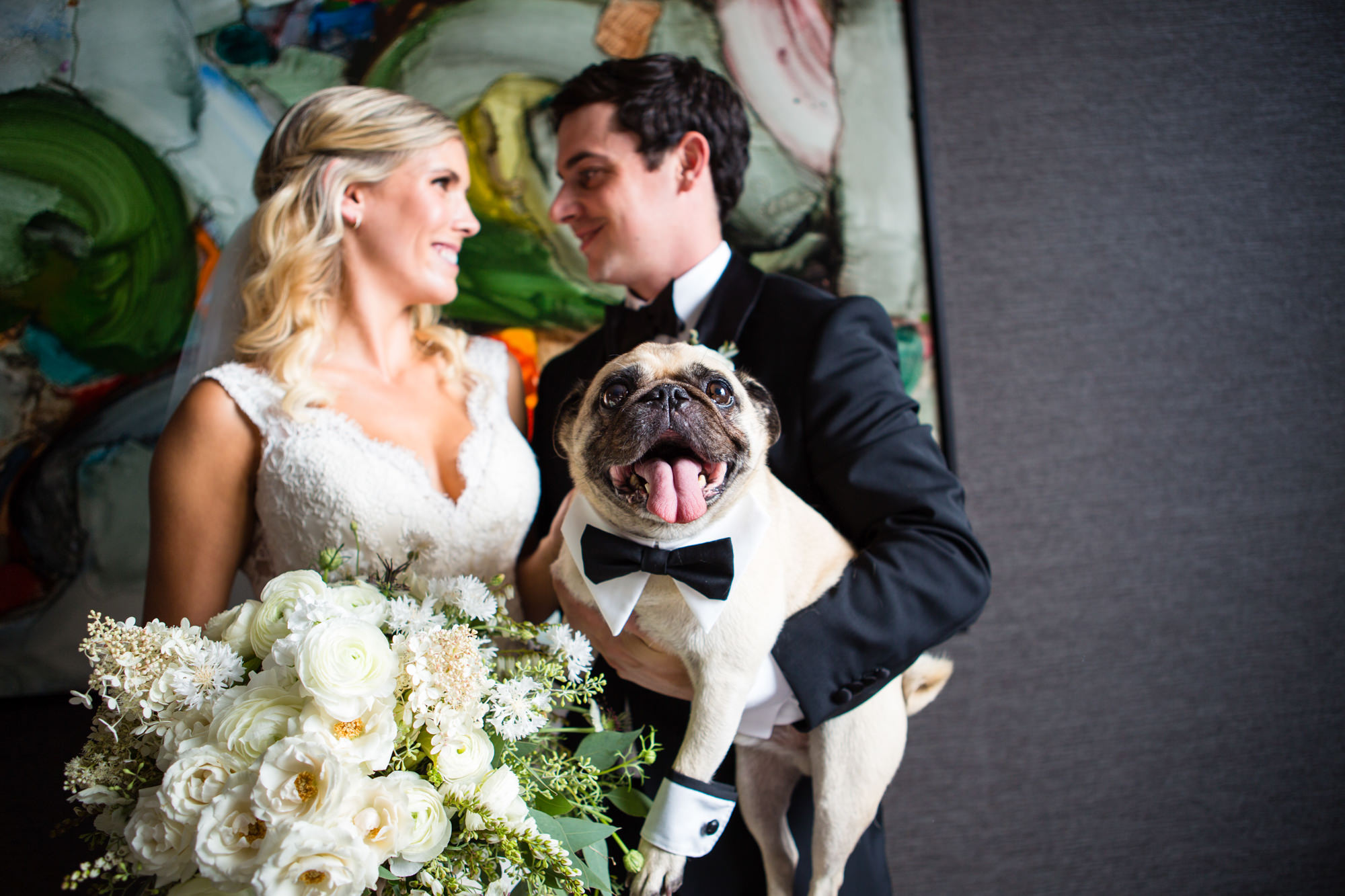Boxer in bowtie steals the show - photo by La Vie Photography