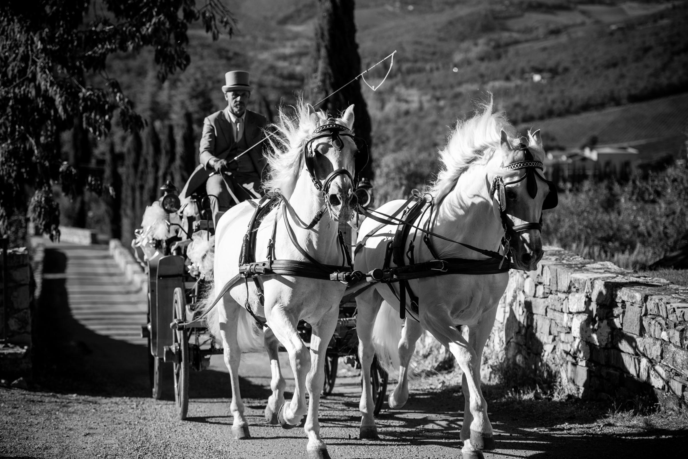 tuscany_morganlynnrazi