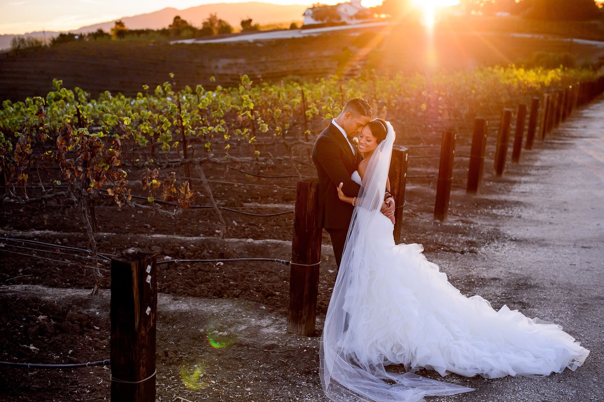 late-afternoon-couple-portrait-in-vineyard-bride-wearing-trumpet-gown-joshua-dwain-photography