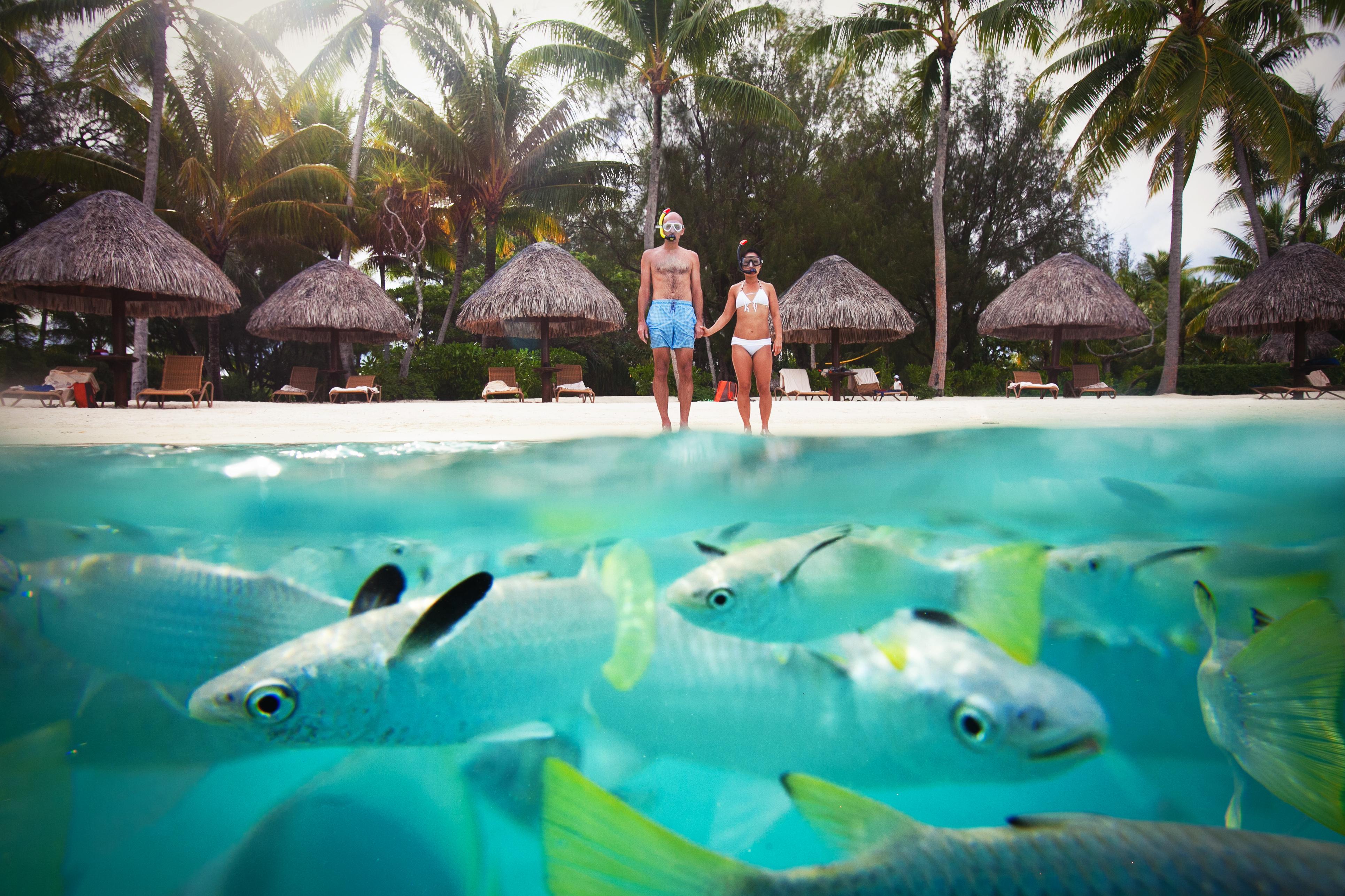 Underwater portrait in Bora Bora lagoon - photo by Callaway Gable