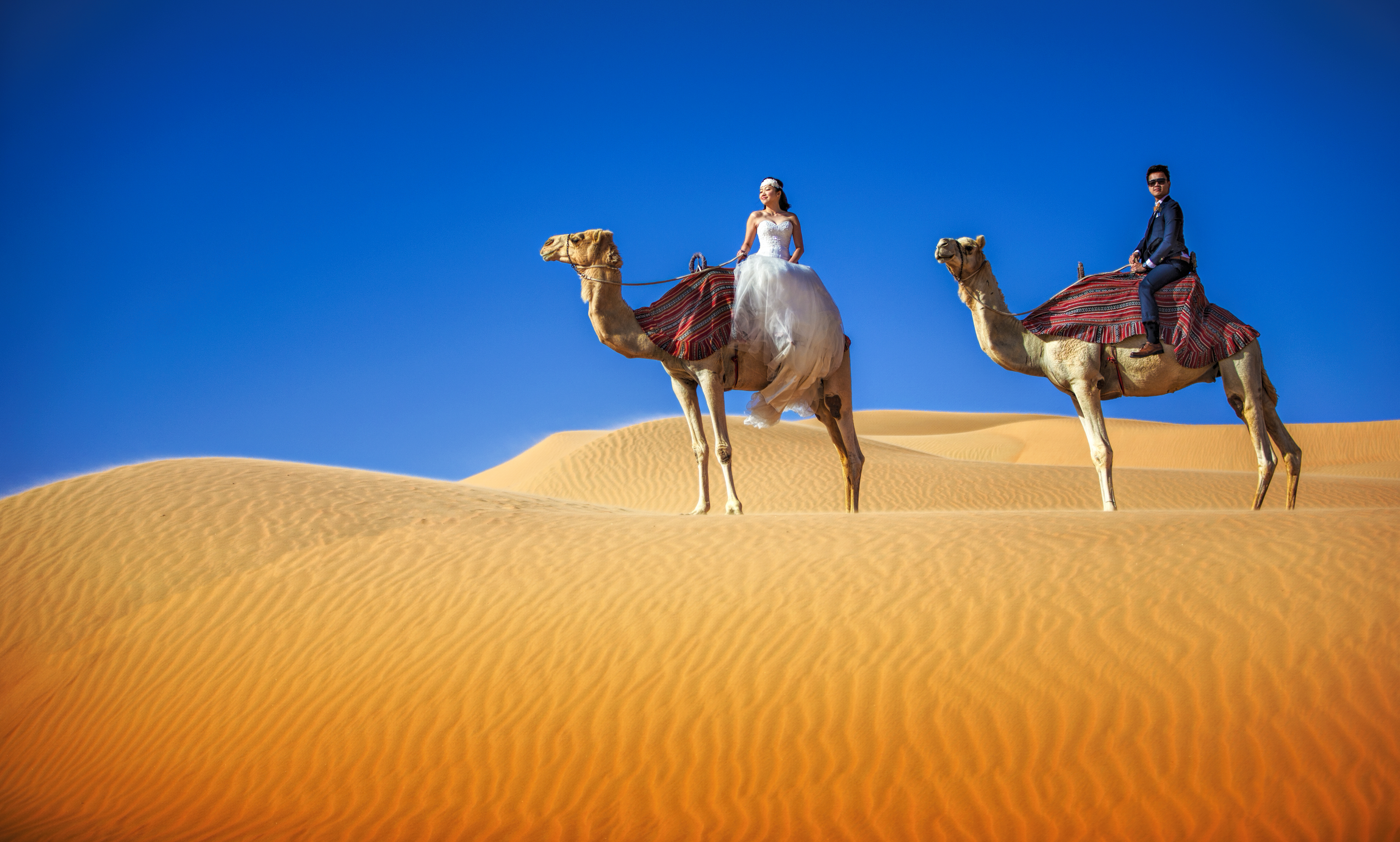 Couple riding camels on epic sand dune outside of Dubai - photo by Edwin Tan