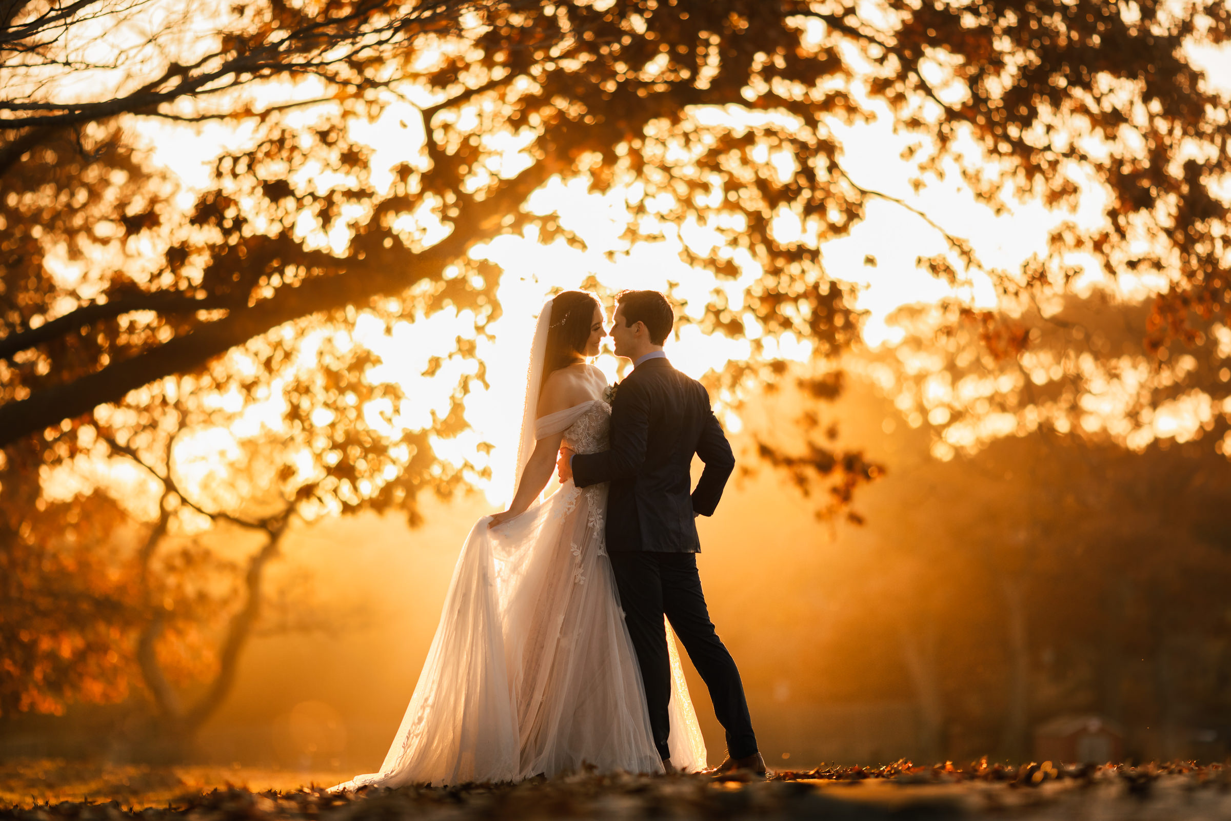 backlit-couple-against-trees-m-hart-los-angeles-photographer