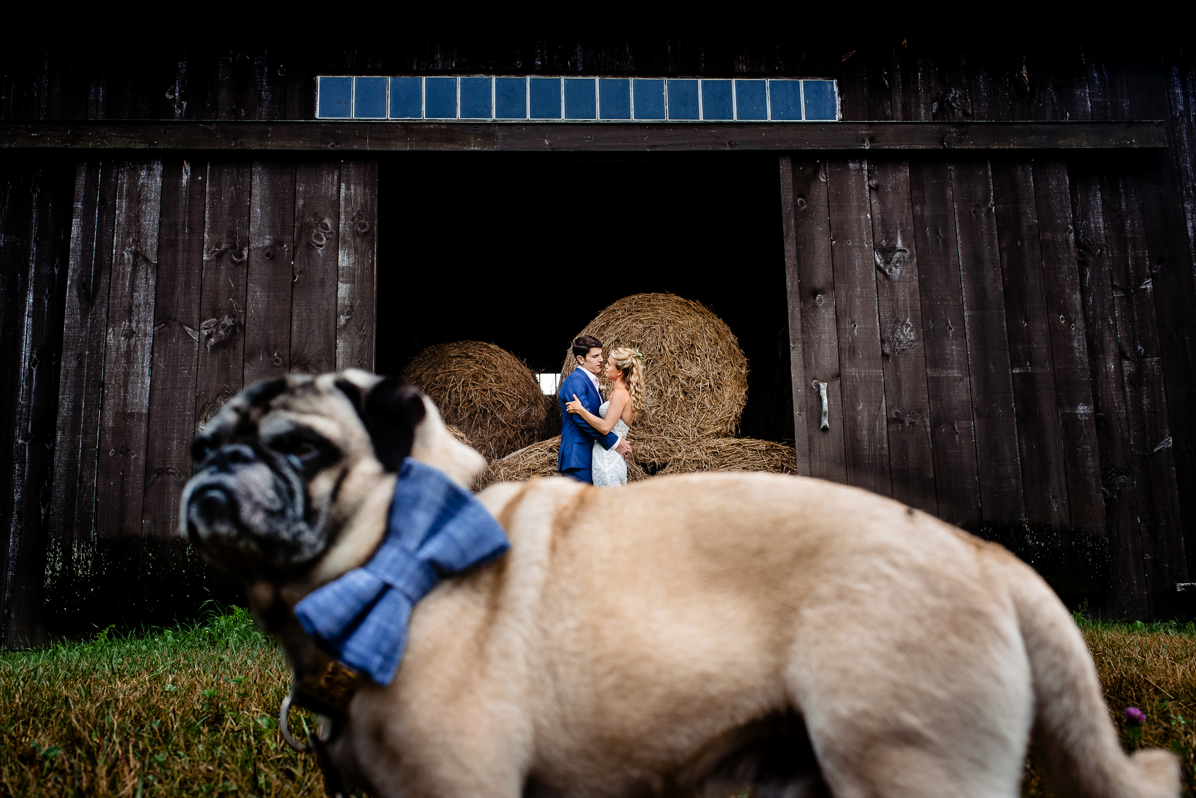 bride-and-groom-and-their-dog-too-portrait-by-the-barn-photo-by-hannah-photography