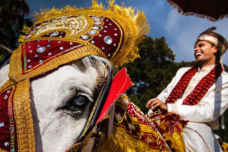 indian-groom-arrives-on-ornately-decorated-horse-worlds-best-wedding-photos-callaway-gable-los-angeles-wedding-photographers