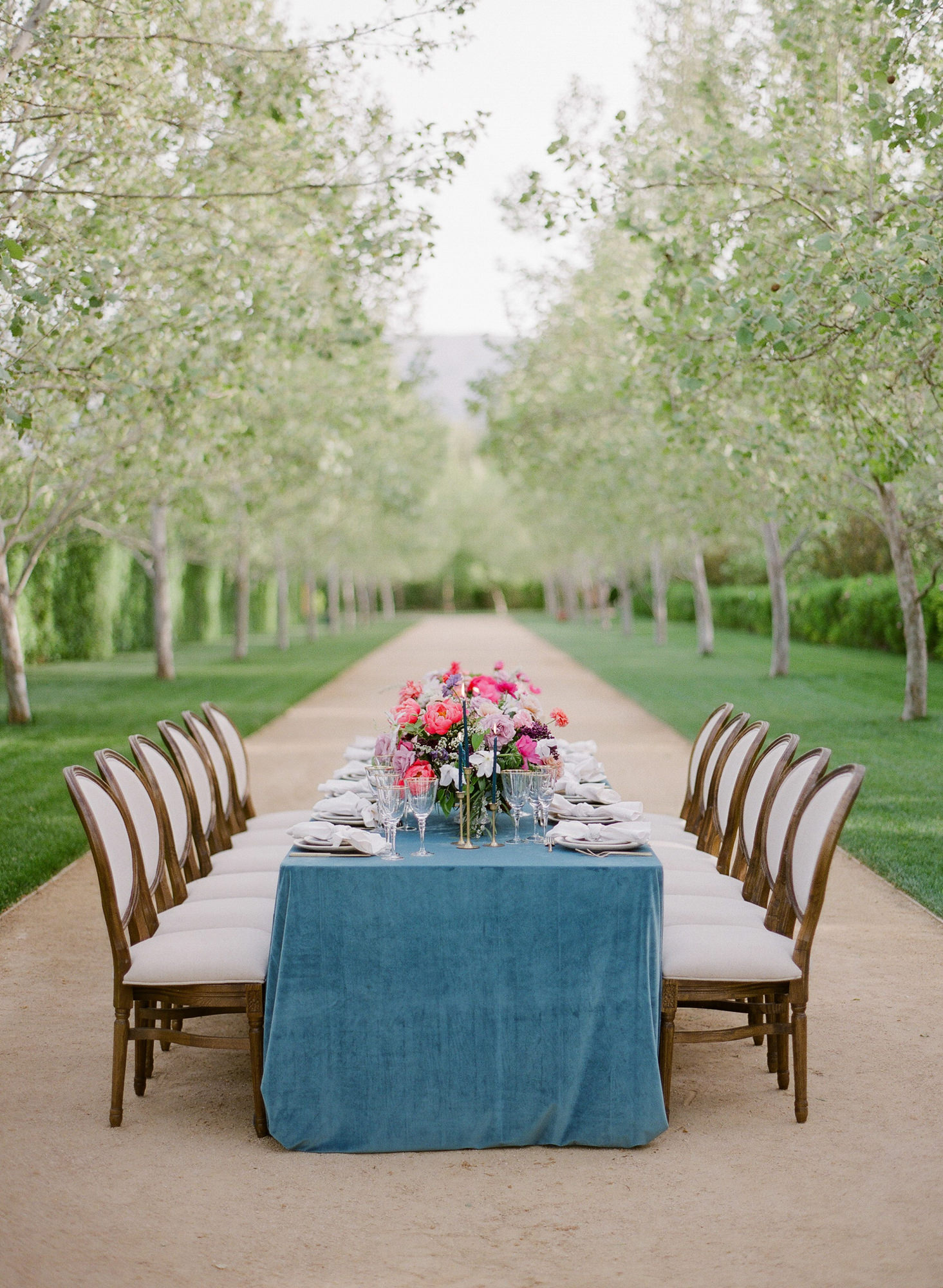Reception table with opera chairs, rose centerpieces, and blue tablecloth - photo by Greg Finck