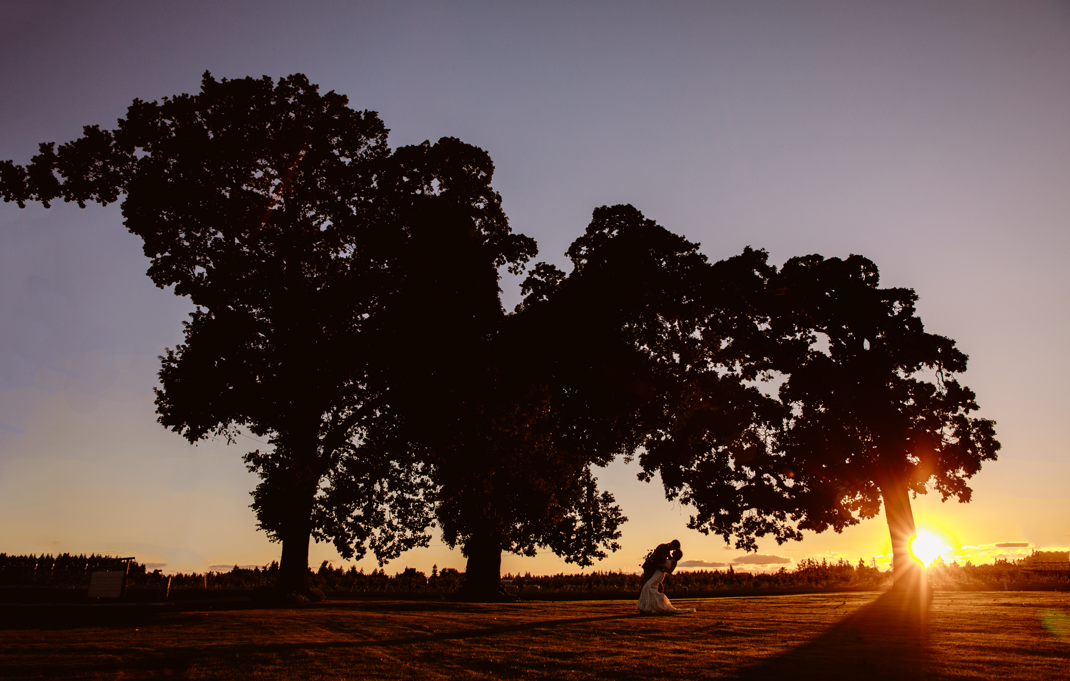 Silhouette portrait of couple against trees during golden sunset - photo by Jessica Hill Photography
