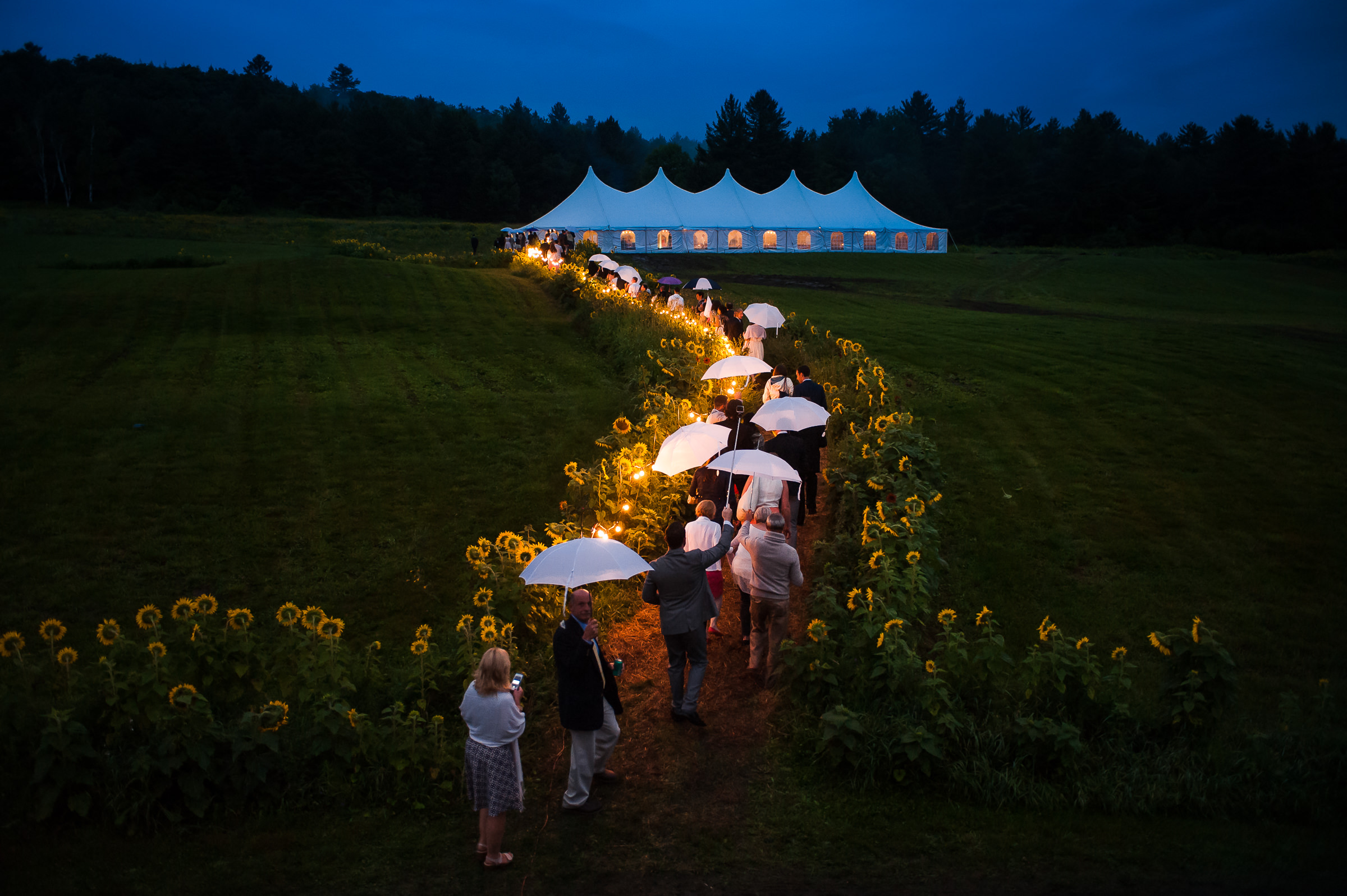 wedding-guests-walking-to-tent-with-white-umbrellas-at-twilight-photo-by-hannah-photography