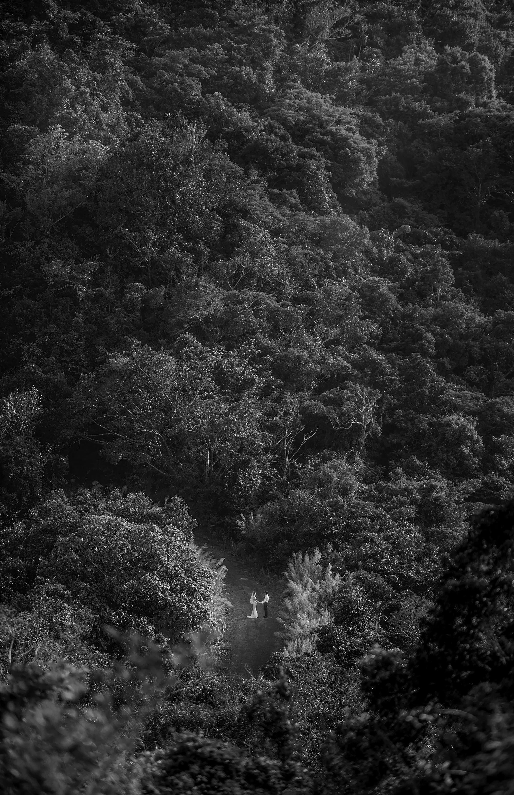 Drone photo of couple alone in forest by 37 Frames - Japan