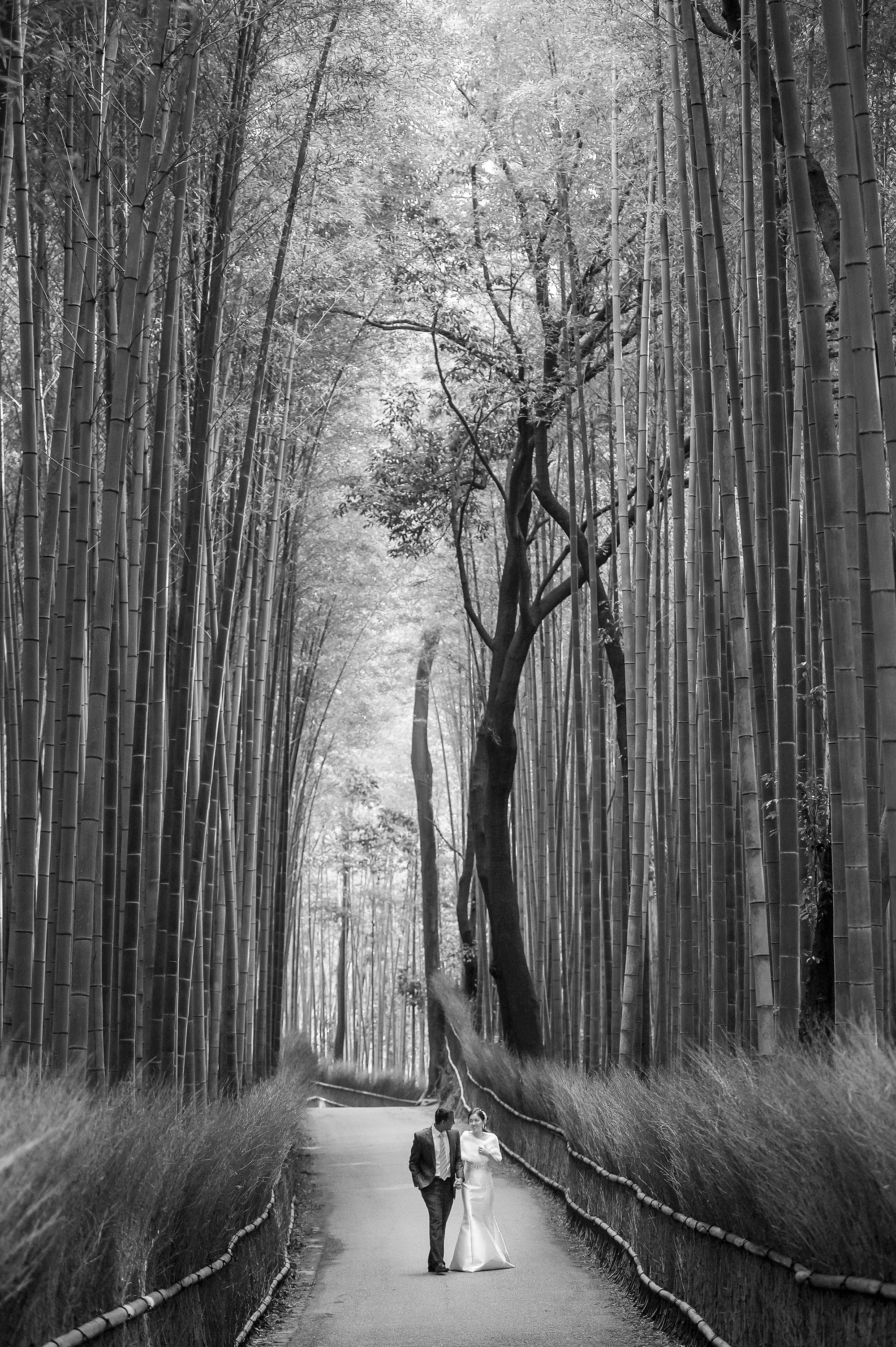 couple walking in bamboo forest  - photo by 37 Frames - Japan