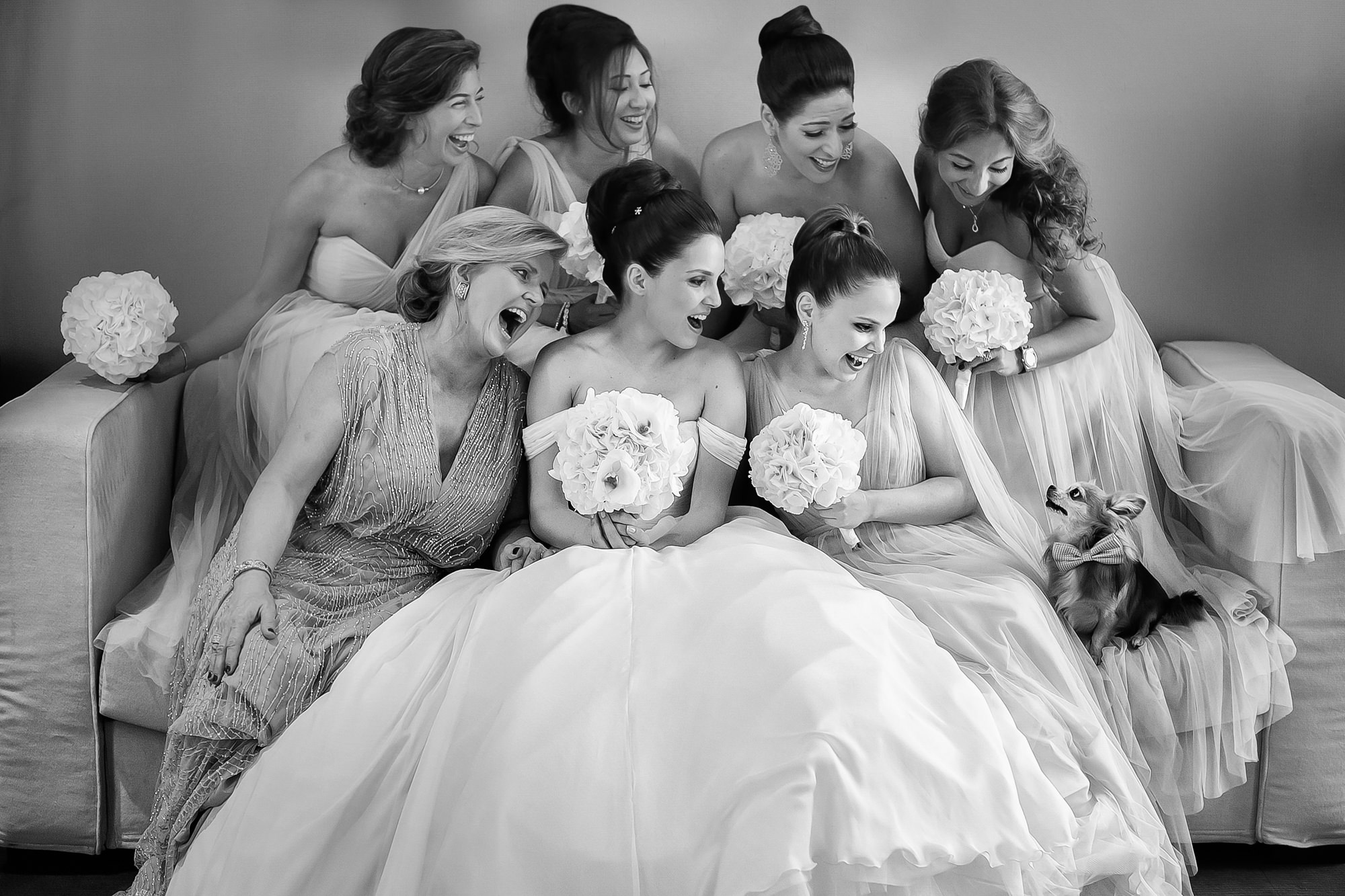 Beautiful bridal party with puppy by David Bastianoni