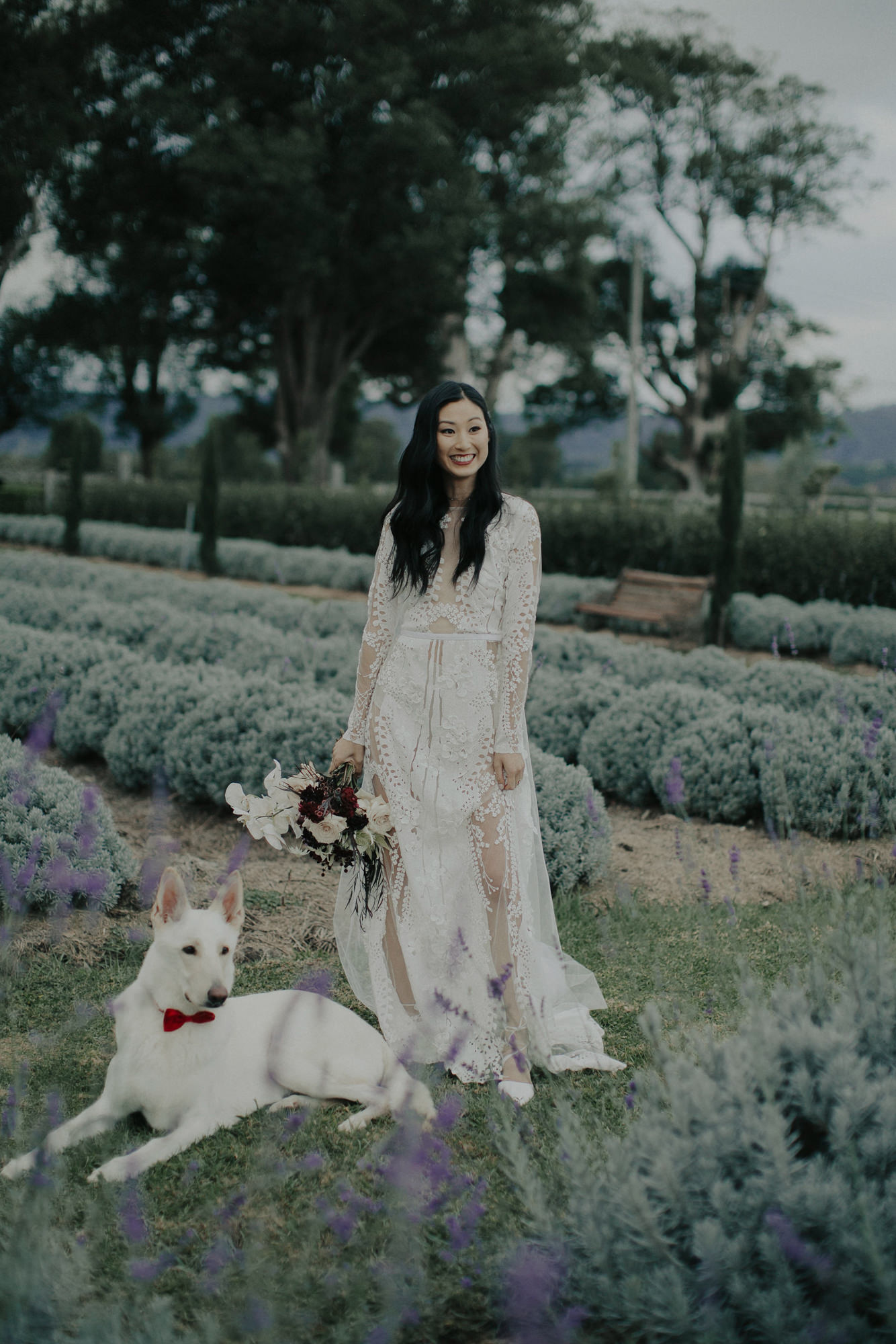 Asian bride standing in a field of lavender with bouquet and her dog, by Dan O' Day