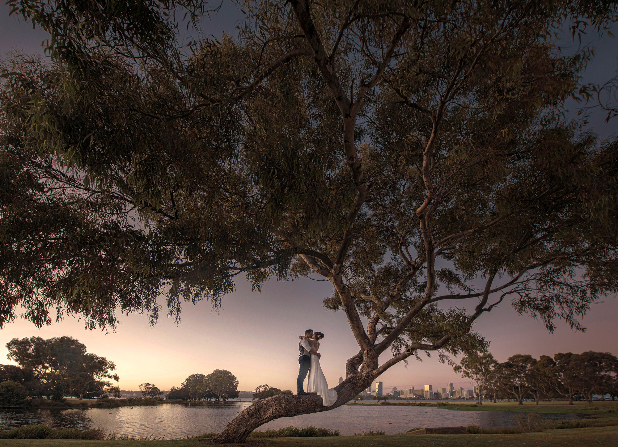 Bride and groom embrace on tree, photo by 37 Frames, Japan wedding photographers