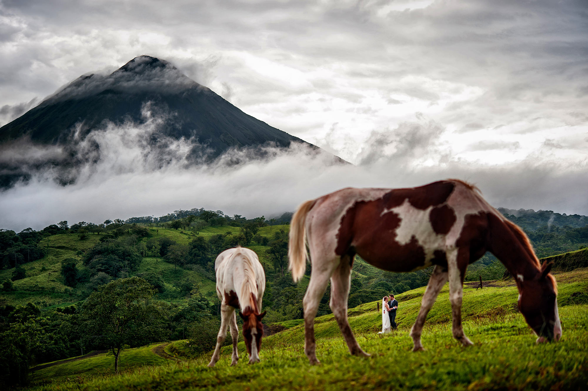 Couple framed by grazing horses in countryside against mountains, by Davina Plus Daniel