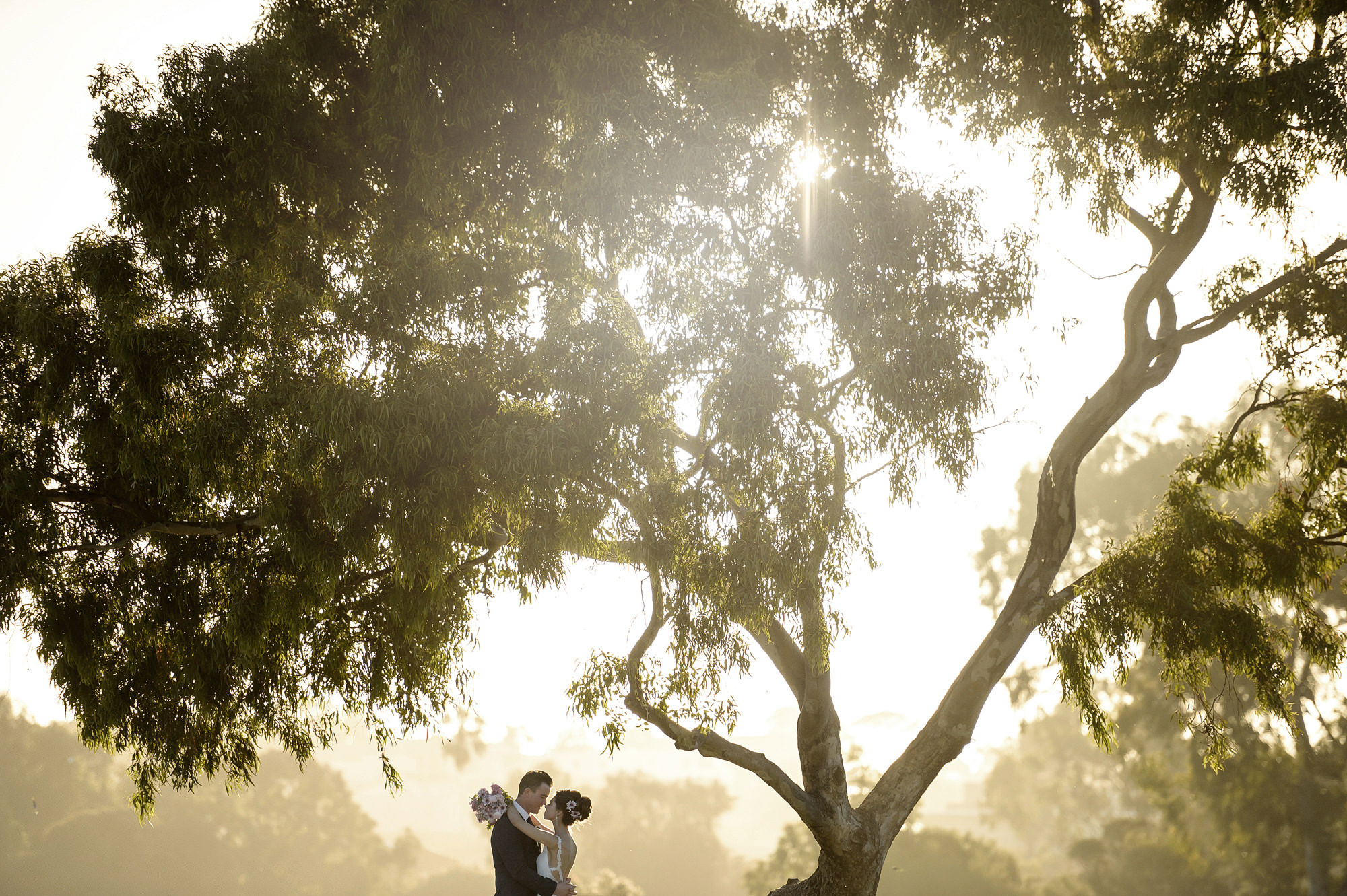 Romantic couple under tree shot in golden hour light by 37 Frames