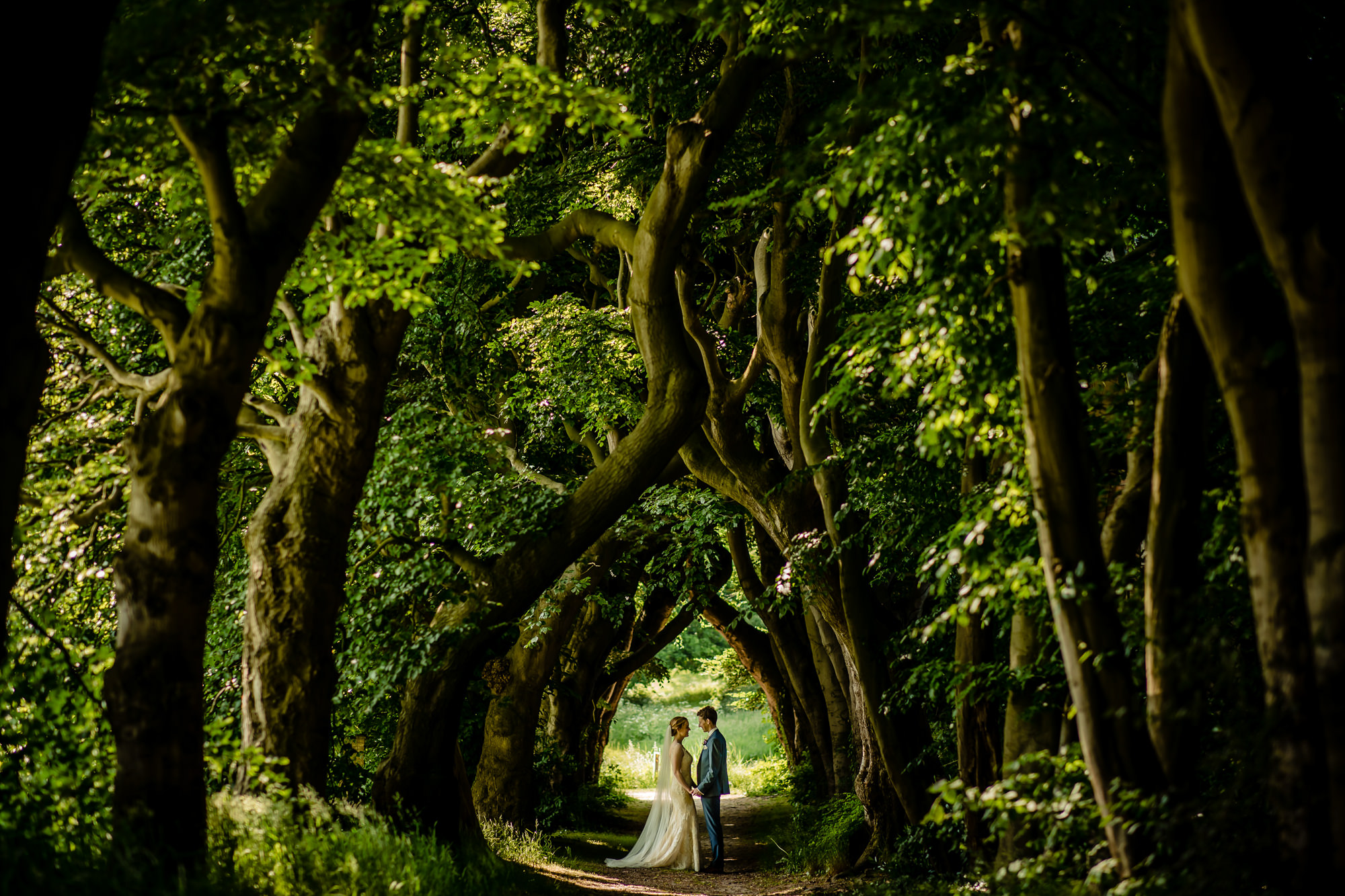 Bride and groom in cathedral of trees, by Eppel Fotographie