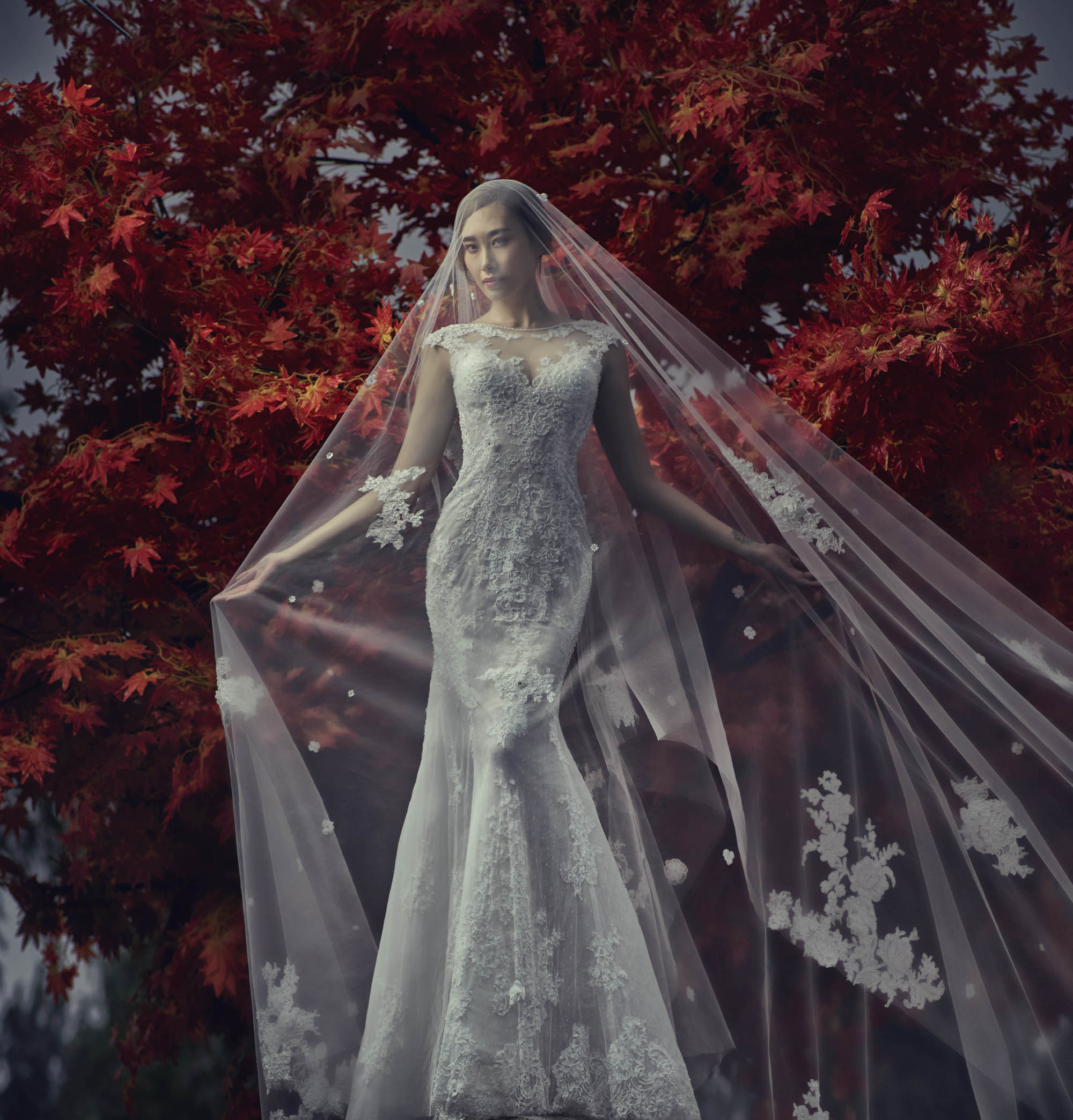 Bride in beautiful mantilla lace veil in capsleeved wedding lace gown, by CM Leung