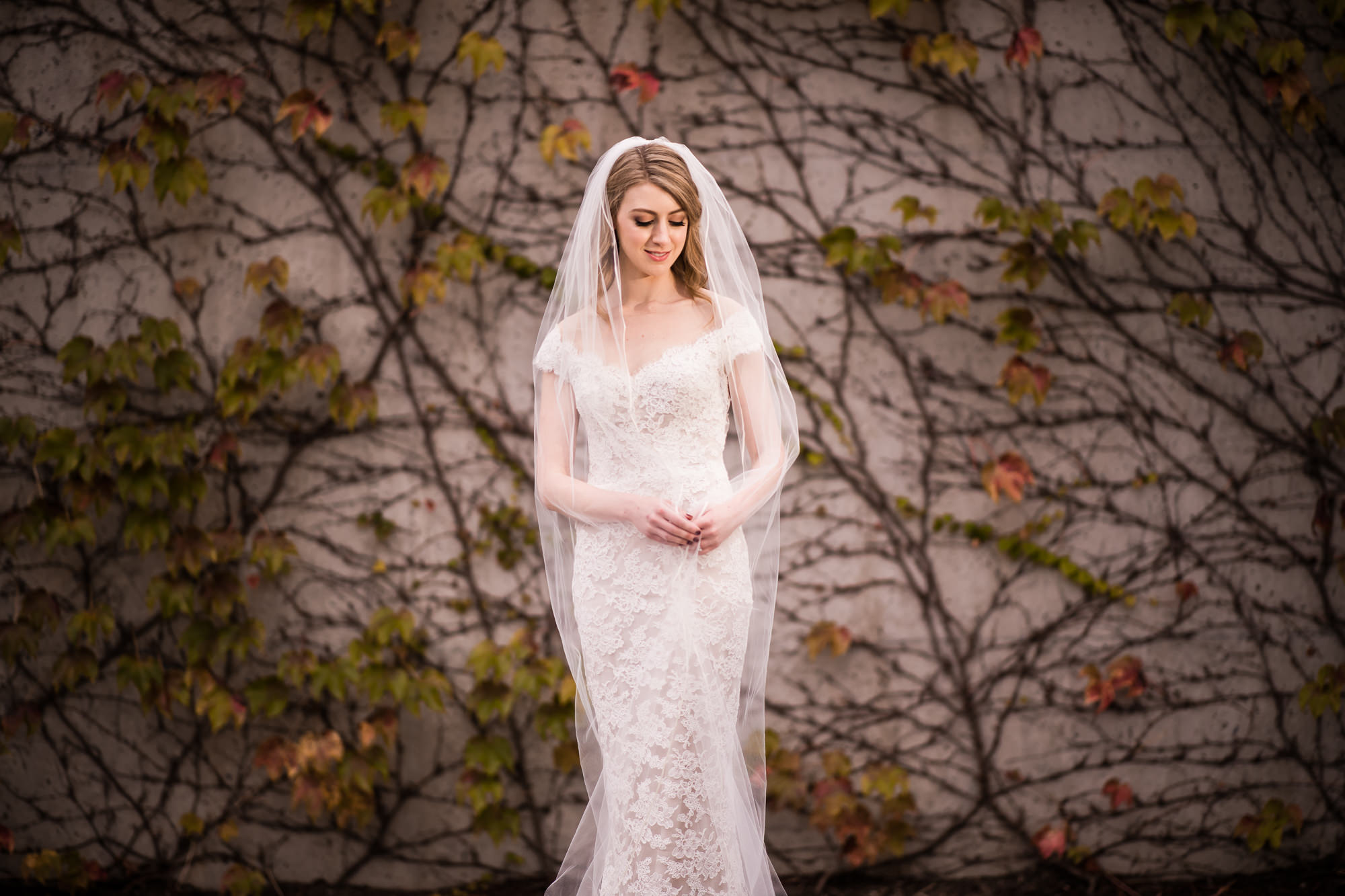 Bridal portrait  in front of Autumn wall photo by Cliff Mautner