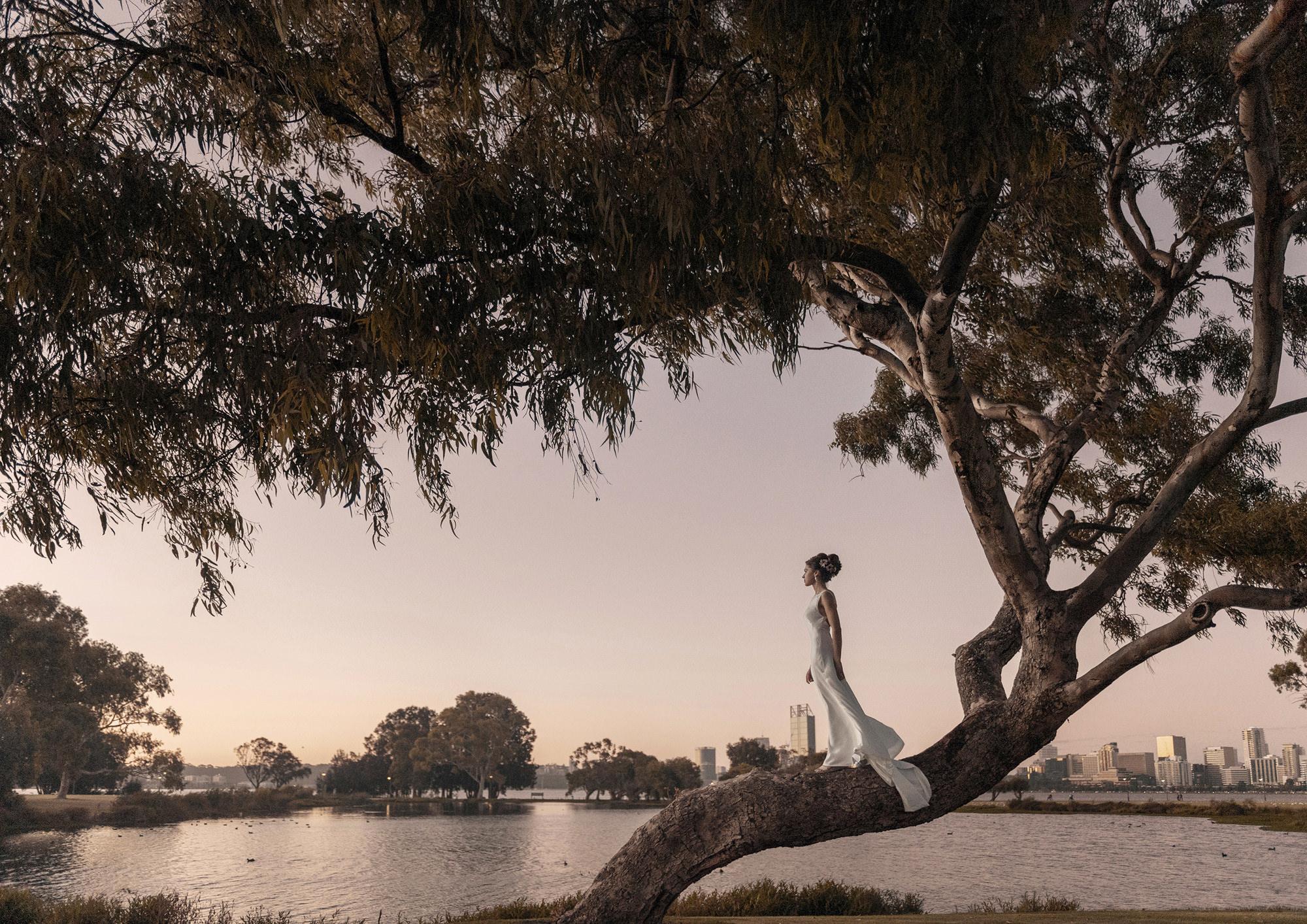 Elegant bride profiled on tree in moring light - photo by 37 Frames - Japan