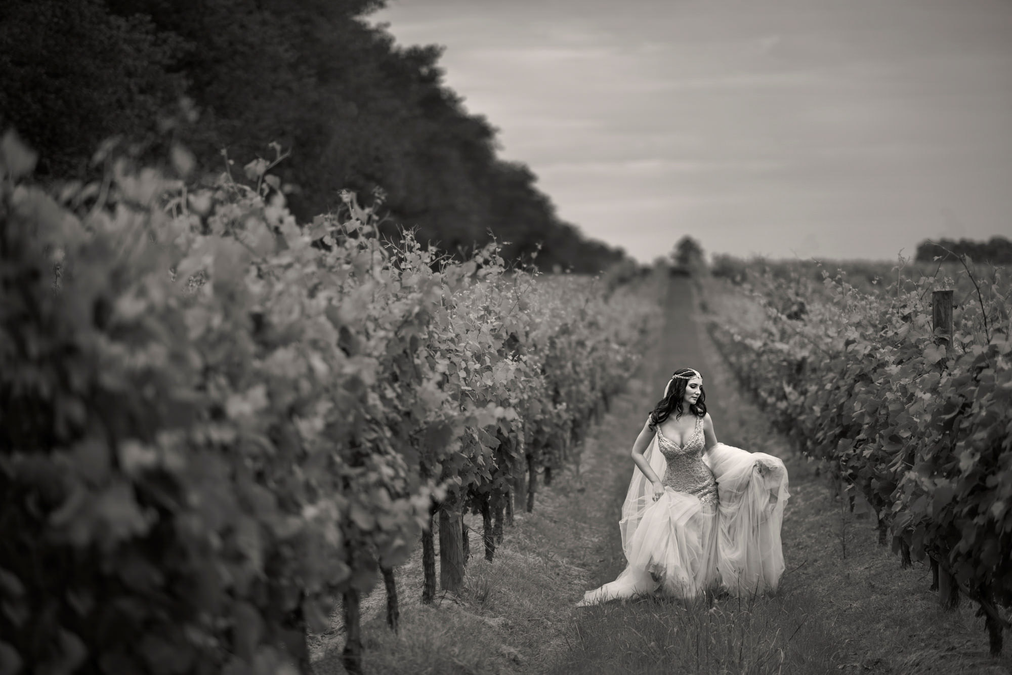 Bride in beaded gown walks through vineyard - photo by Jerry Ghionis