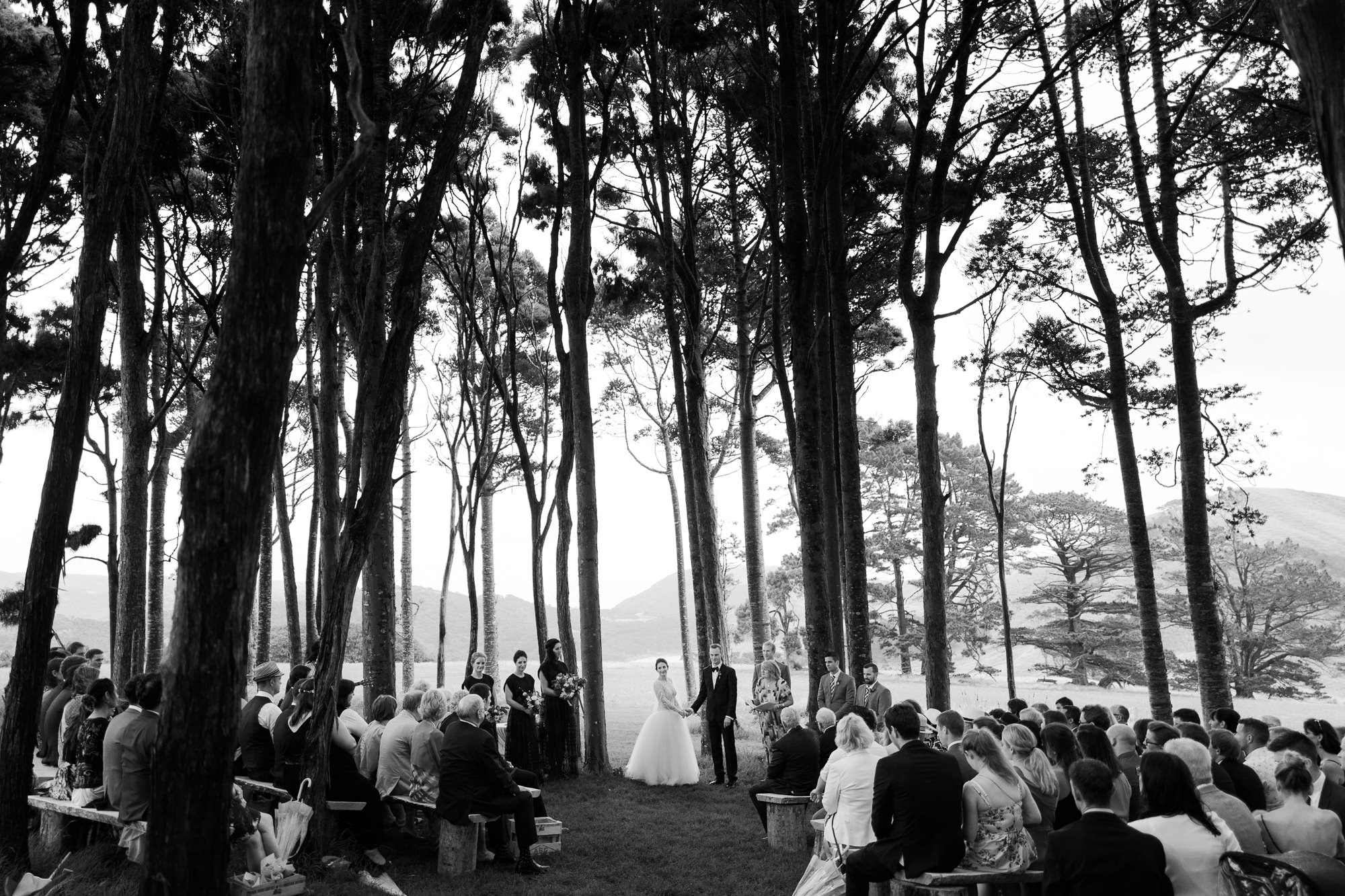 Ceremony in forest photo by Nordica Photography