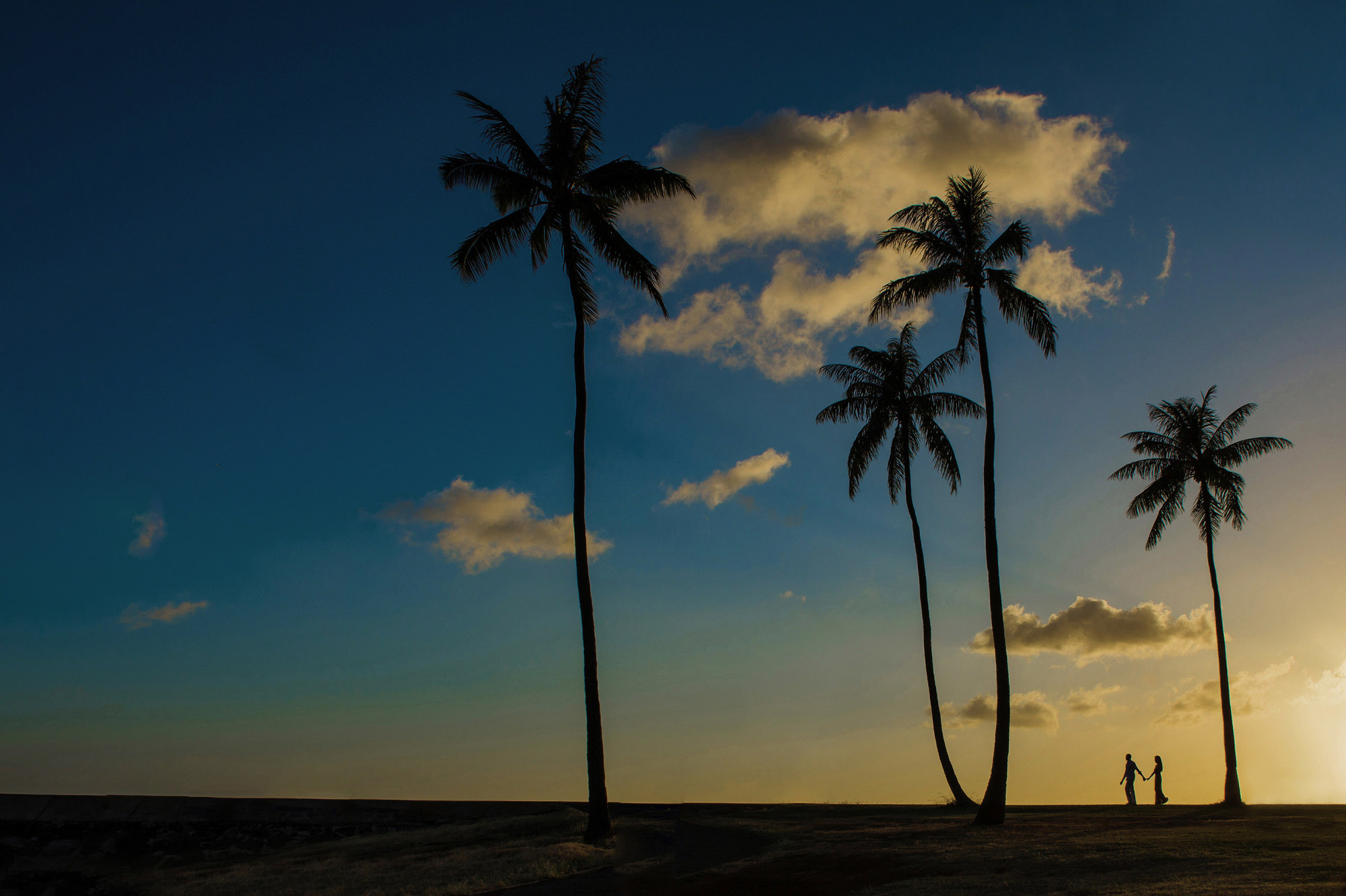 Silhouette of couple on  beach with palm trees - photo by 37 Frames