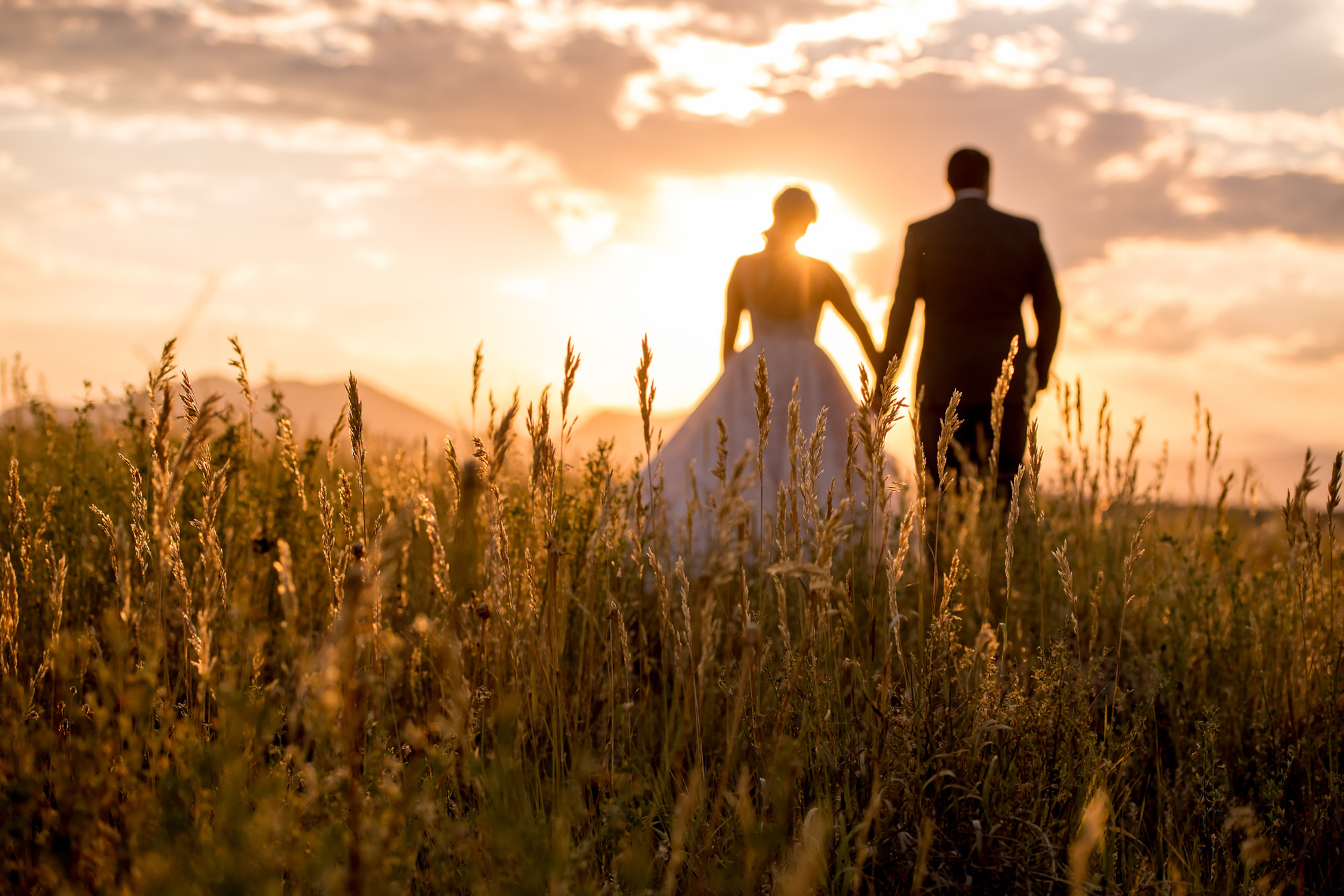 Couple walking away in sunlit grass field - Morgan Lynn Photography