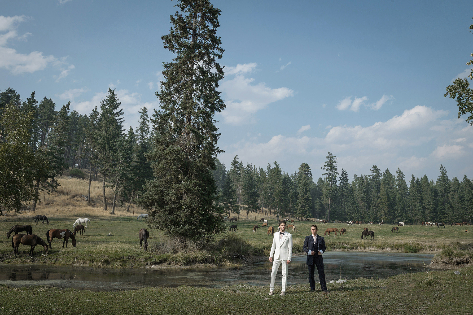 Groom in white tux with best man in field of horses  - photo by 37 Frames