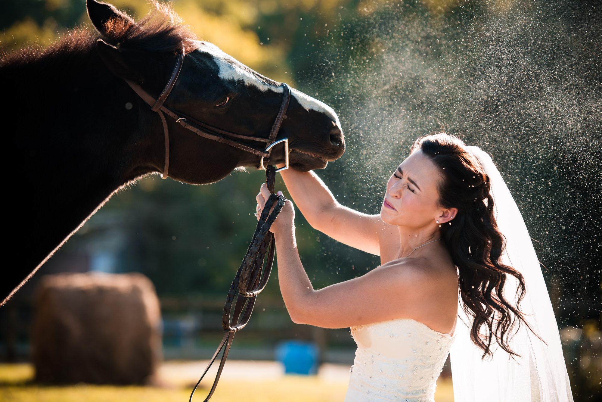 Horse sprays water at bride photo by Cliff Mautner