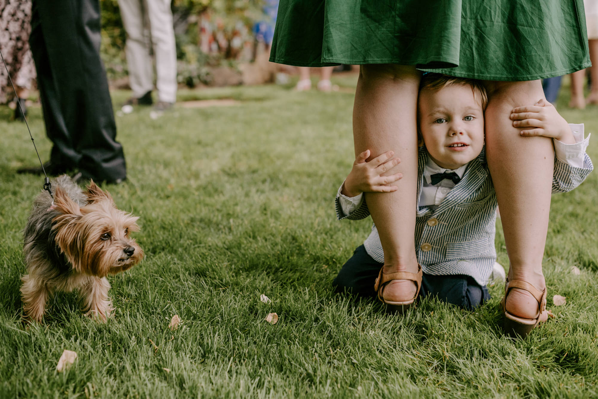 Little boy looks between bridesmaids legs with terrier  - photo by Kristen Marie Parker