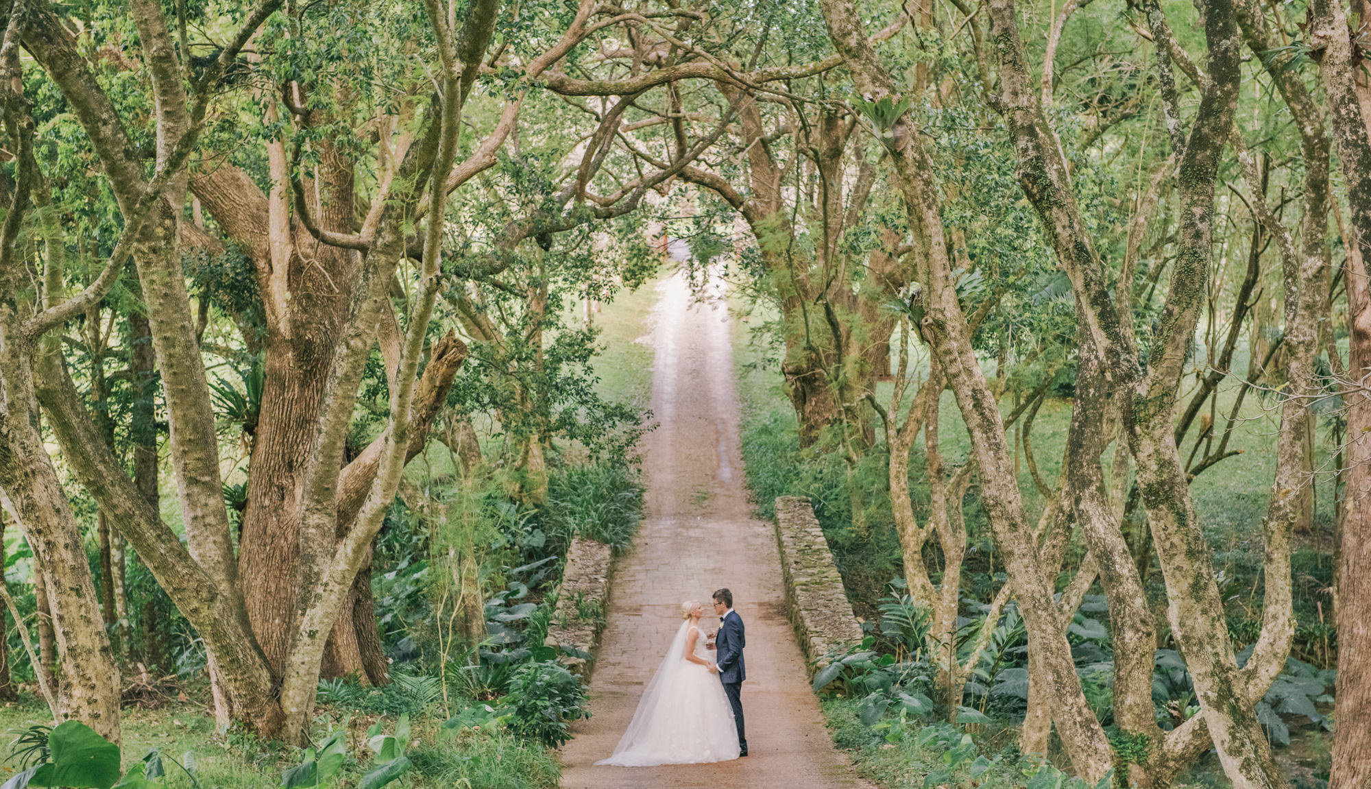Watercolor portrait of bride and groom in woods -  Studio Impressions Photography