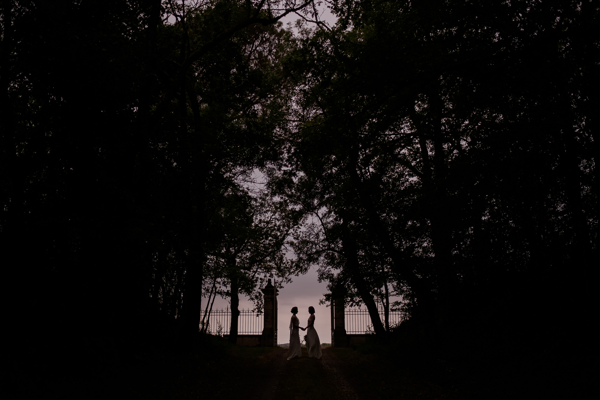 Silhouette of two brides holding hands framed by trees photo by Nordica Photography