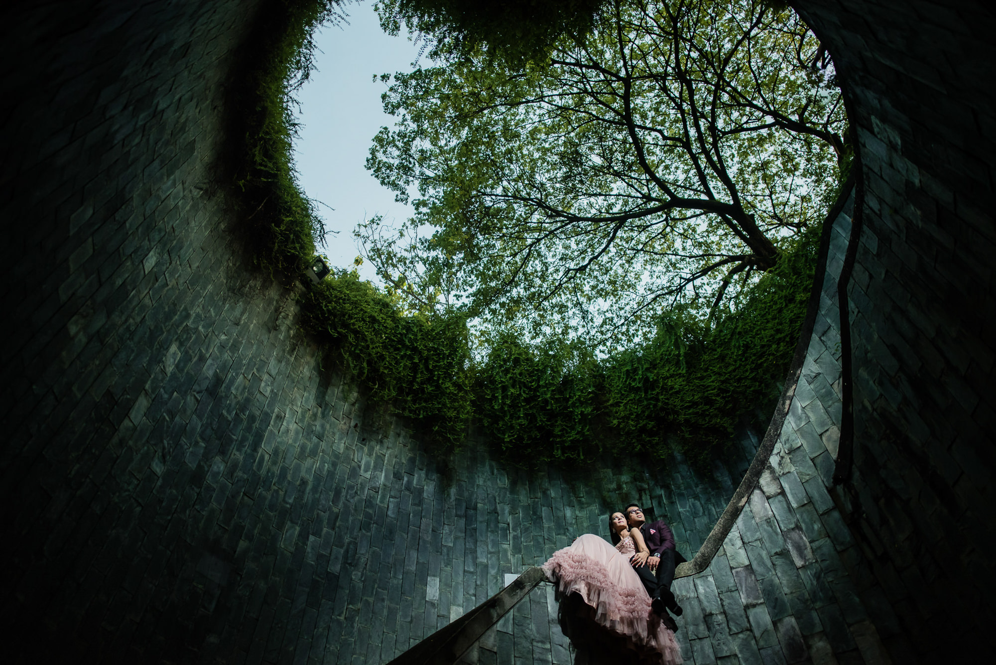 Stunning composition of couple with trees above by Rimi Sen - India