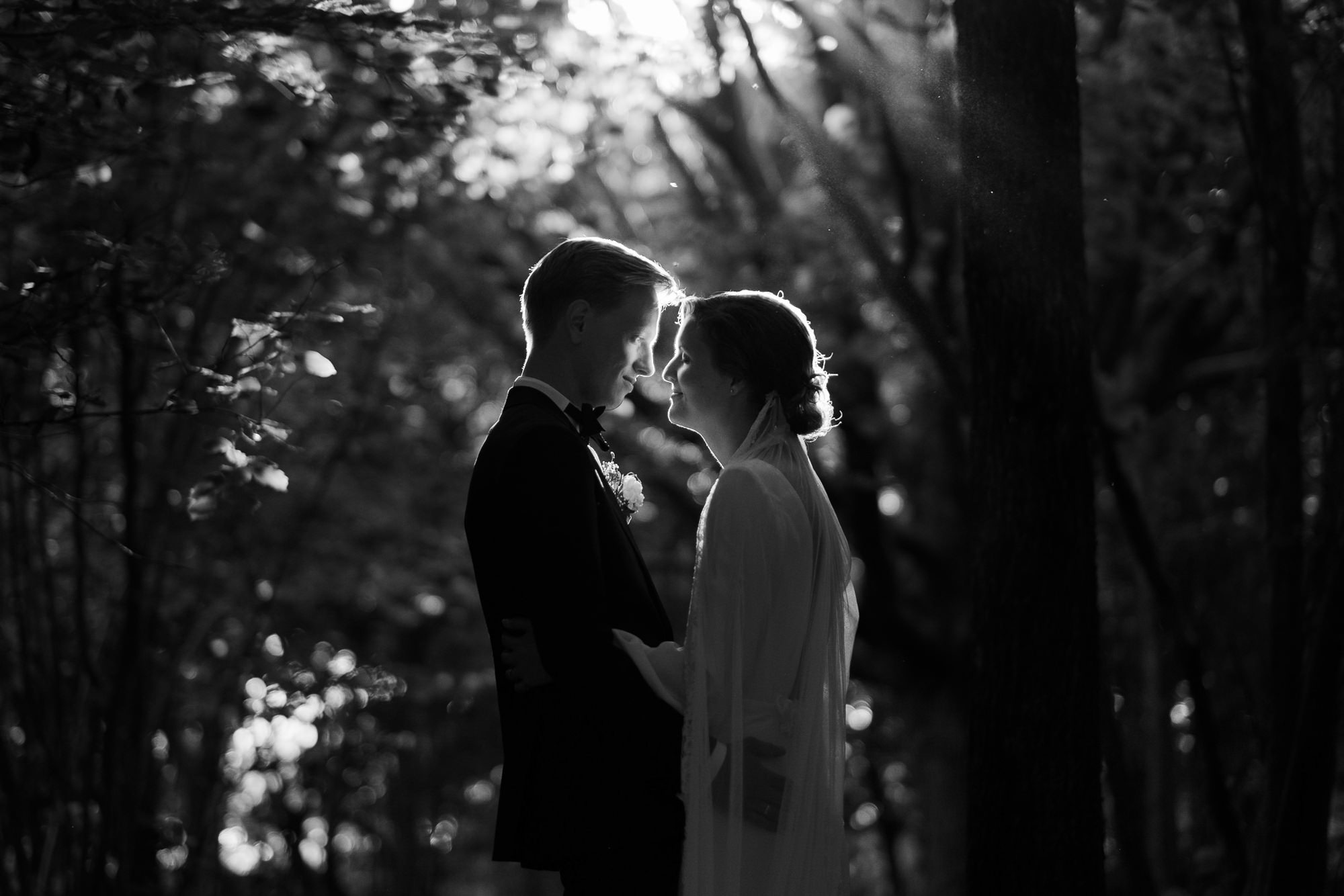 Sublime couple portrait with natural backlight in trees photo by Nordica Photography