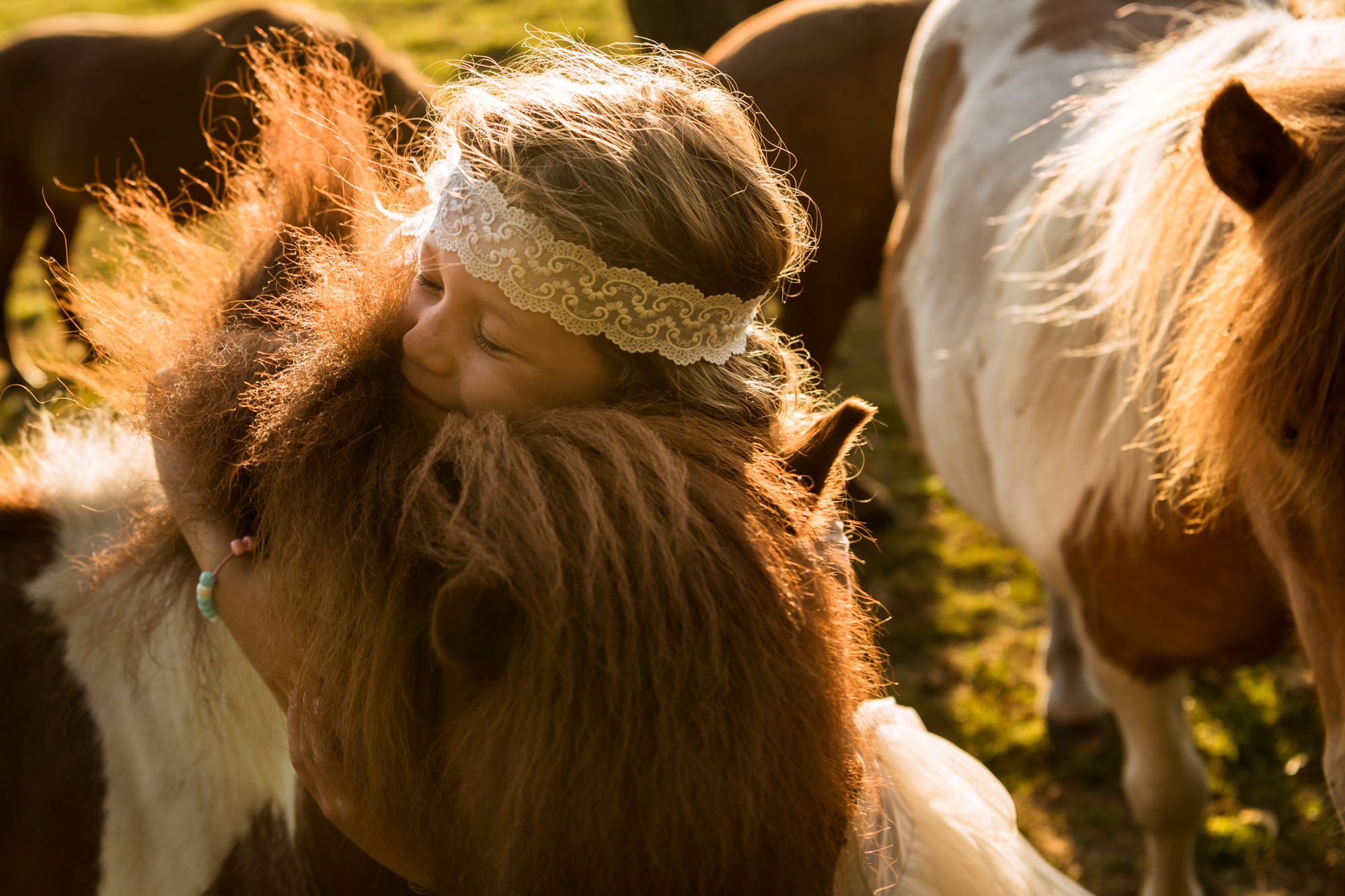 Little girl hugs ponies photo by Fotobelle: Isabelle HattinkS