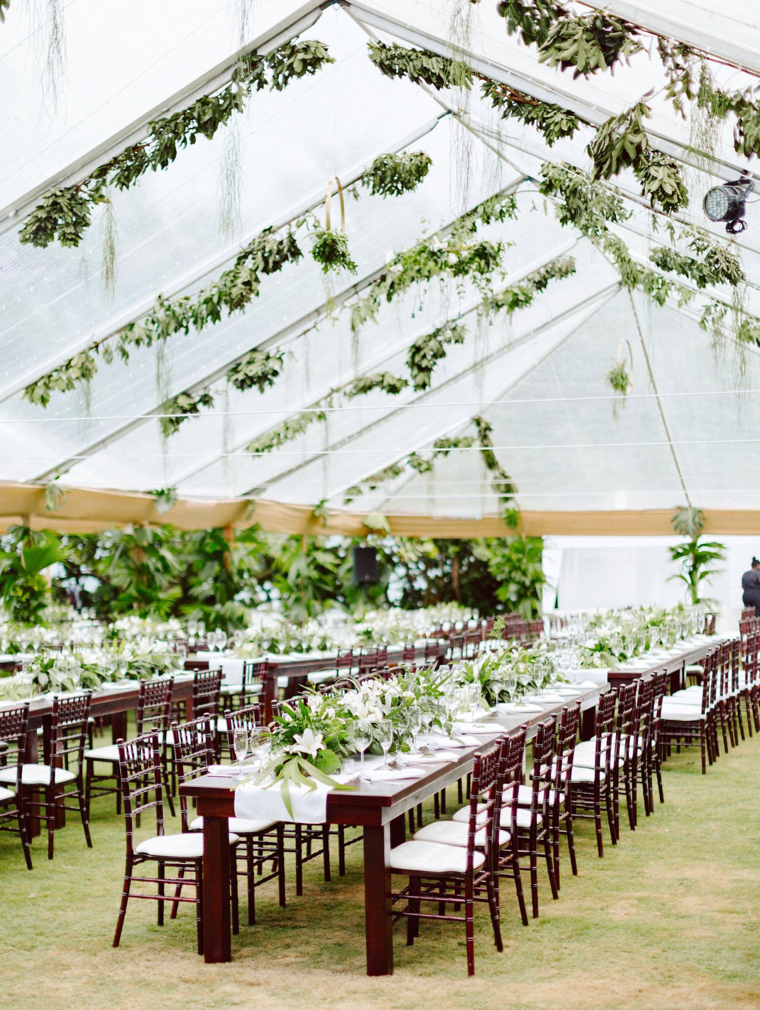 Greenery lined tent with wooden seating  -  photo by Benj Haisch