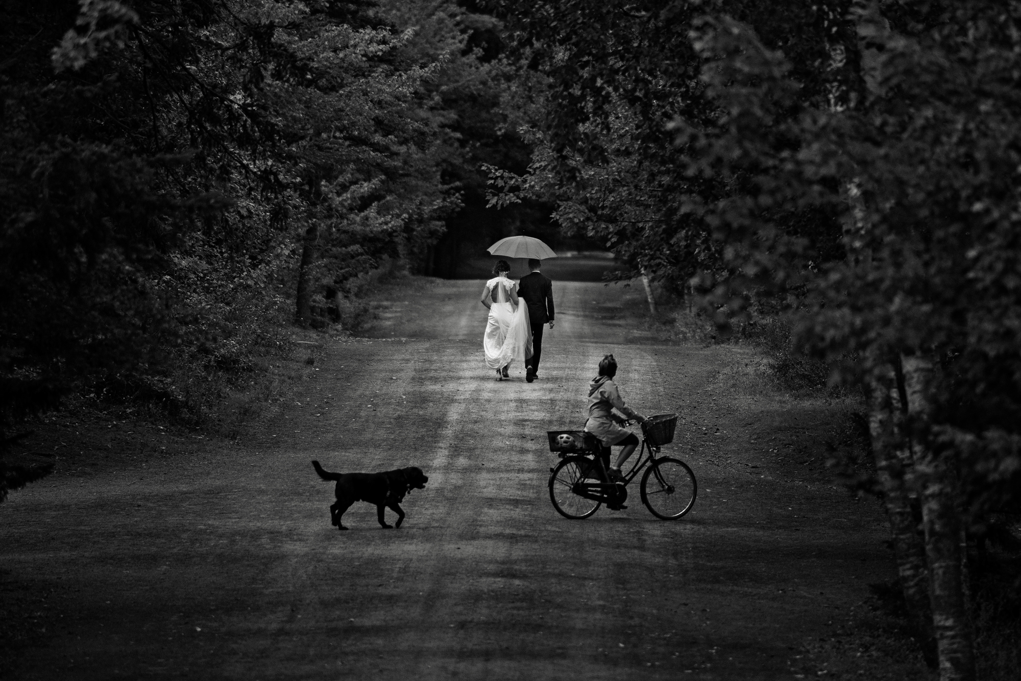 Bicyclist watches bride ad groom walk away - photo by Cooked Photography