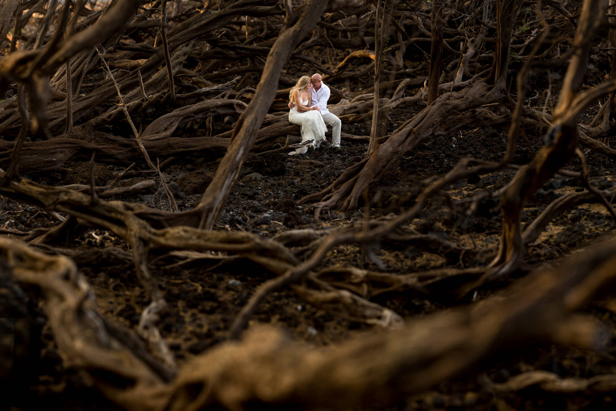 Couple among twisting roots - photo by Two Mann Studios