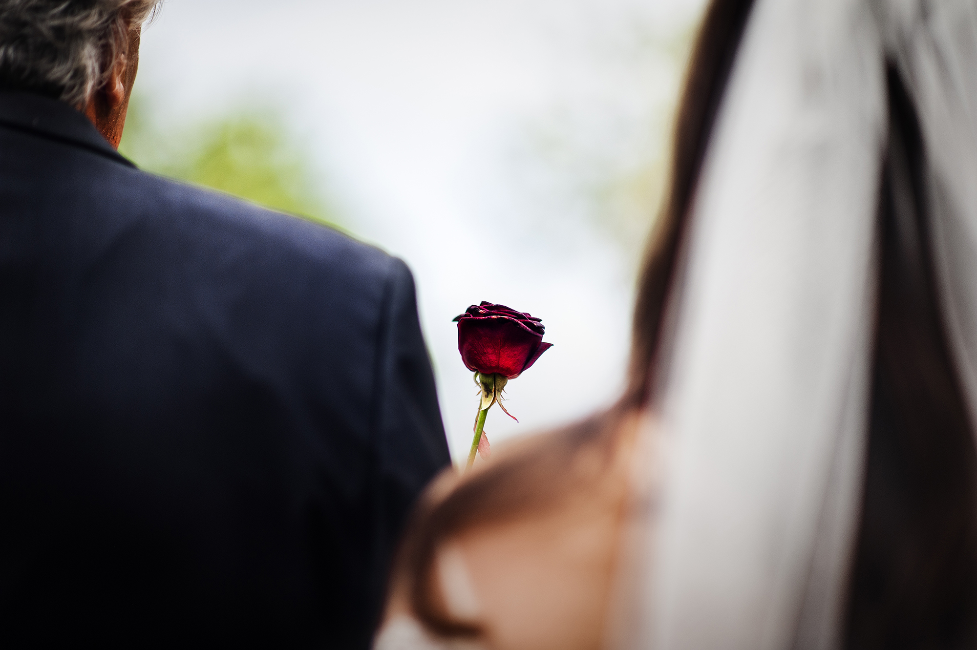 Bride with single red rose - photo by Victor Lax