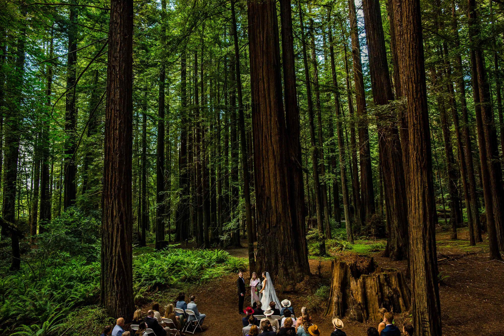 Redwood wedding ceremony photo by JOS Studios