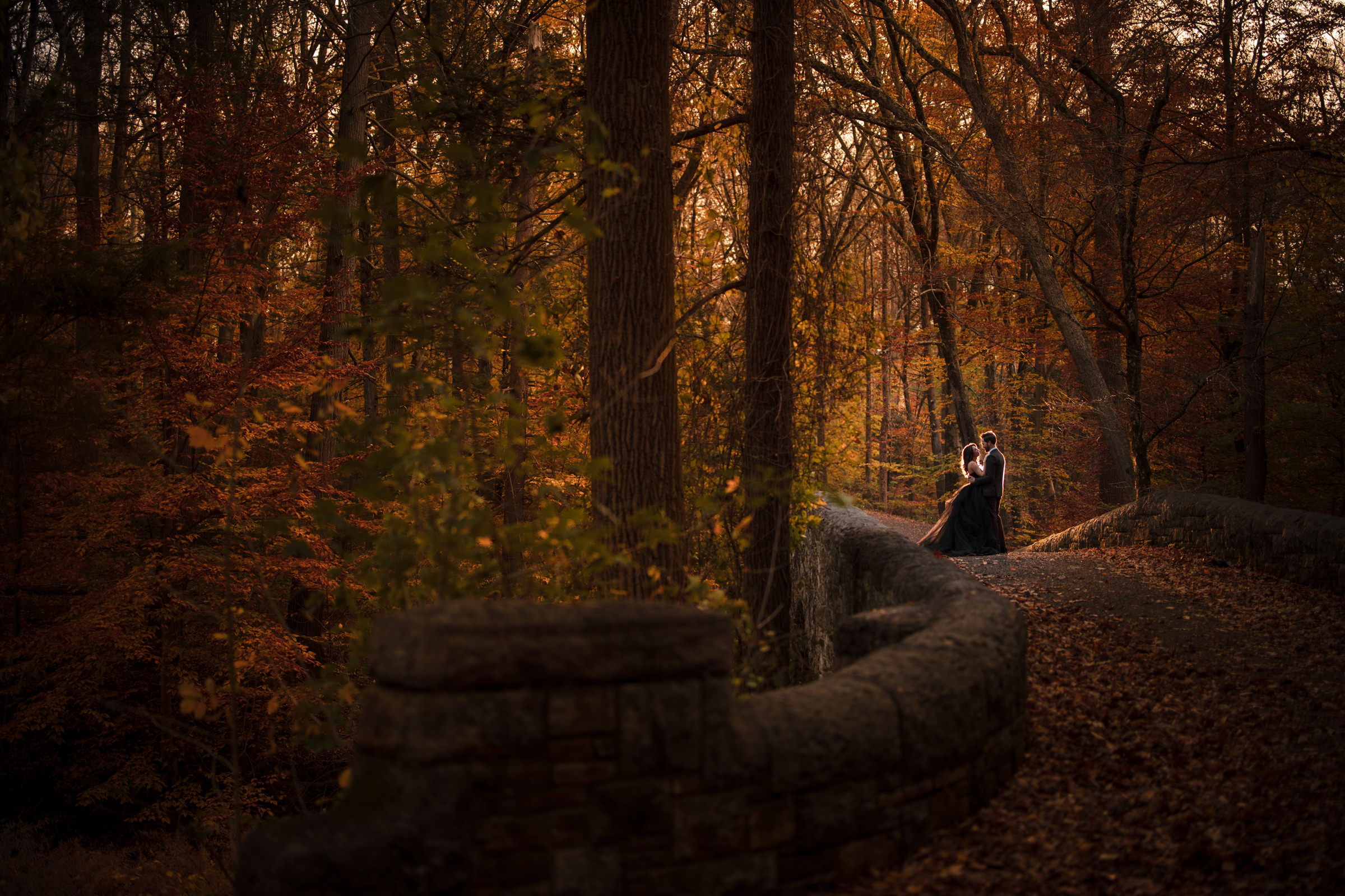Bride and groom in central park fall foliage  - Photo by Susan Stripling Photography