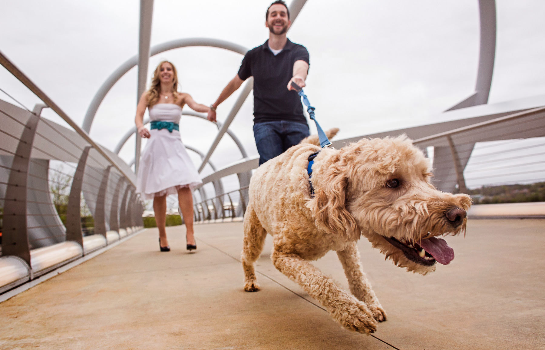 Funny engagement photo with dog pulling at leash - photo by Ken Pak