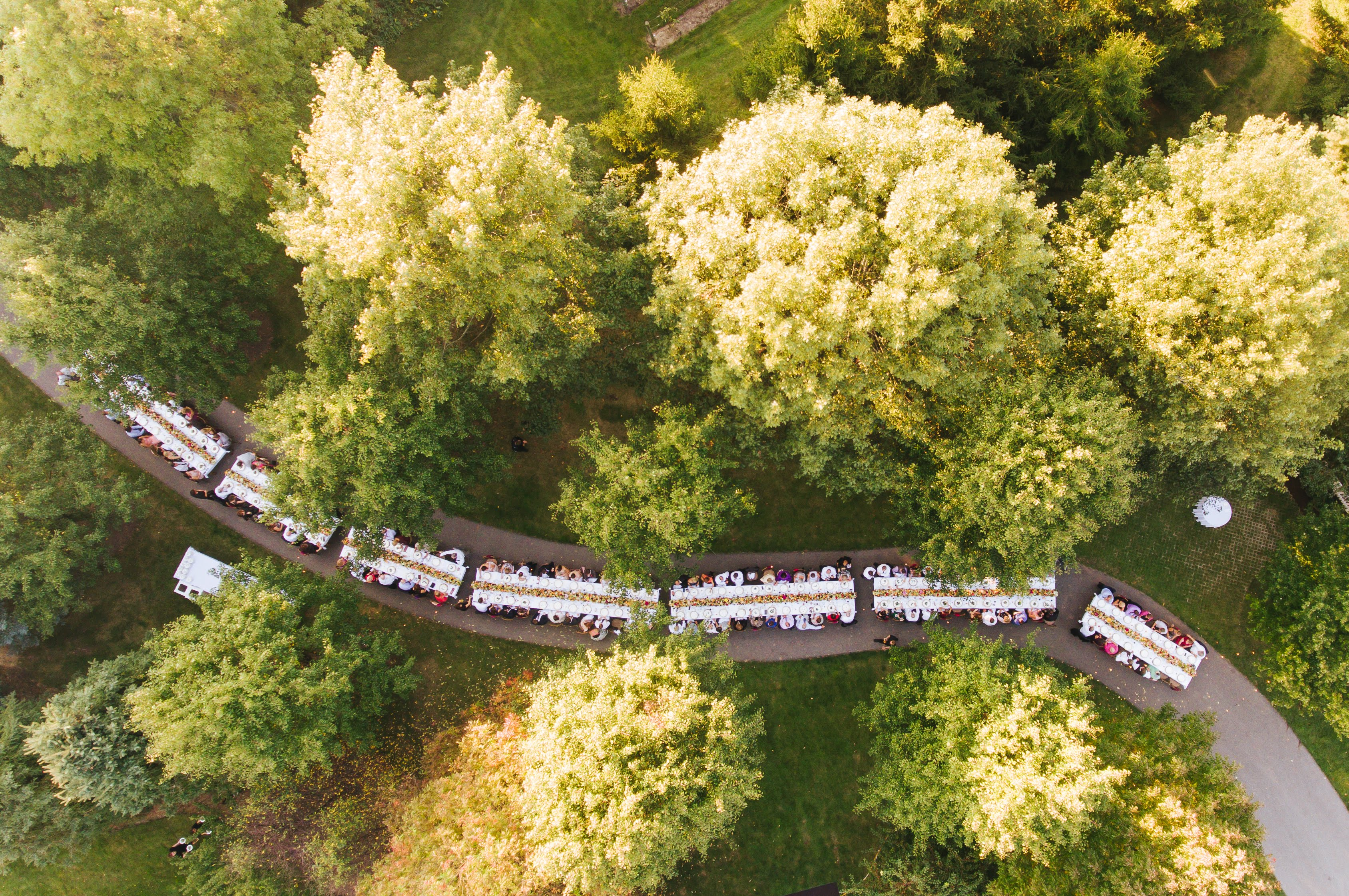 Aerial shot of reception setup in a forest. Photo by Ken Pak Photography