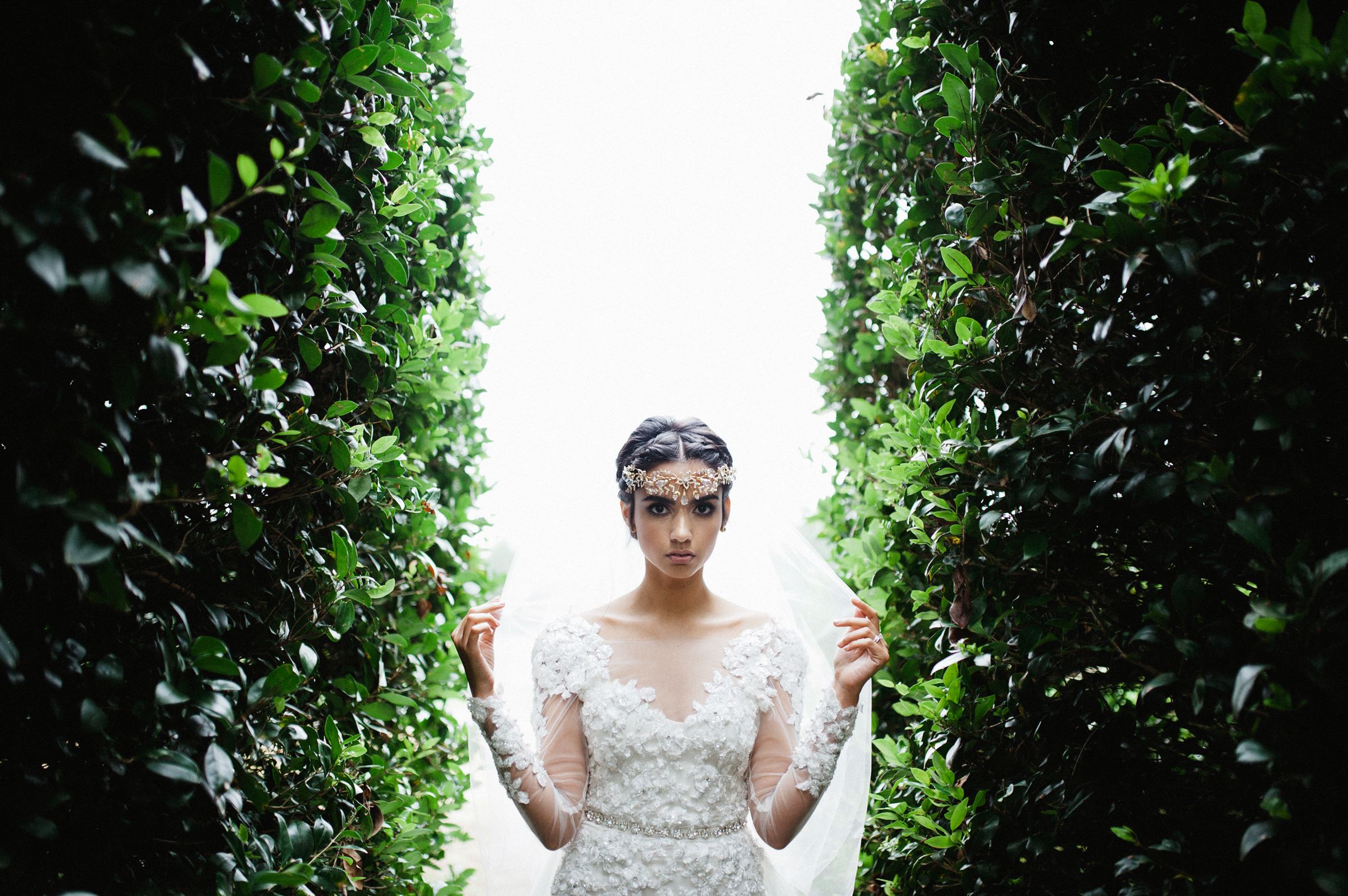 Bride in lace dress framed by hedges - photo by Richard Israel Photography