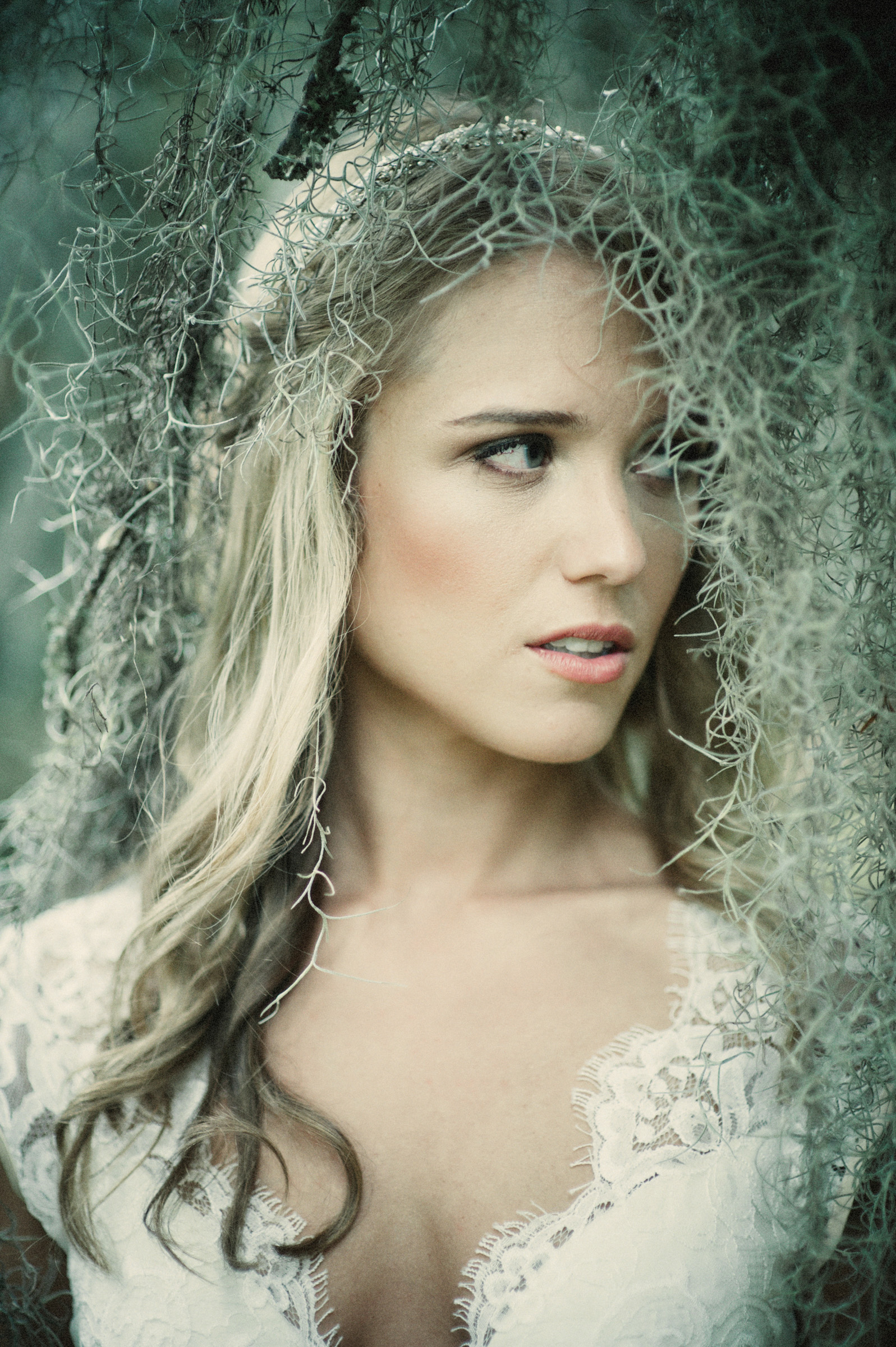 Bride in spanish moss by Richard Israel