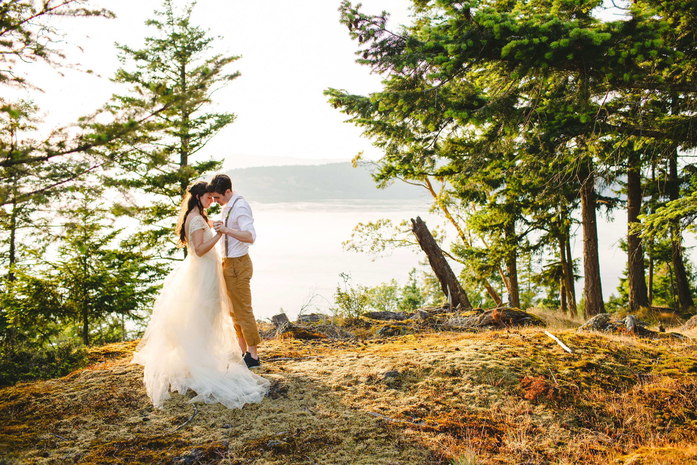 Bride and groom at forested viewpoint - photo by Satya Curcio Photography